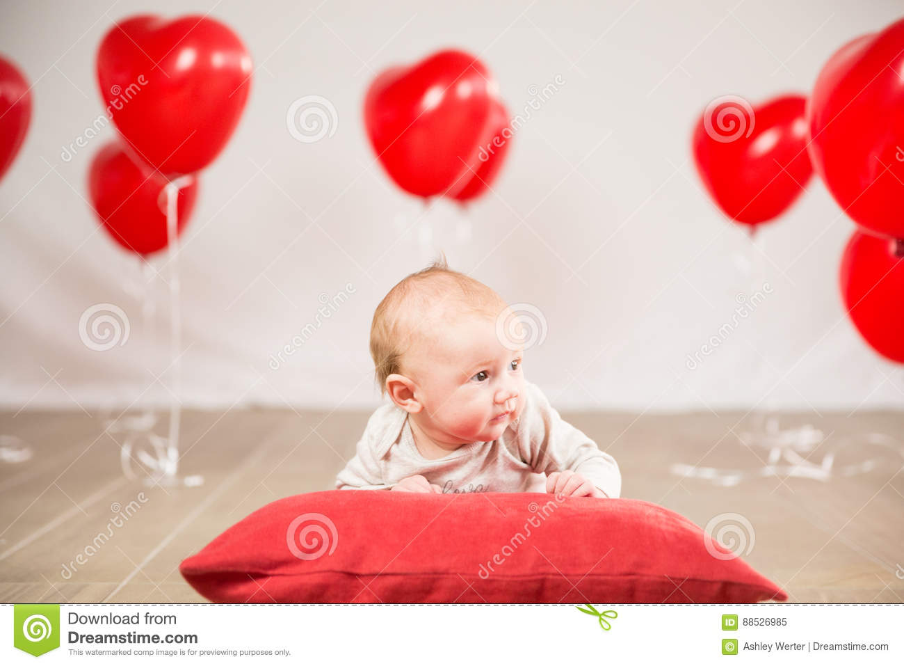 Valentines Day Portrait Stock Image Image Of Photoshoot 88526985