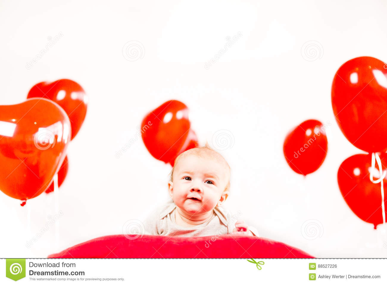 Valentines Day Portrait Stock Photo Image Of Little 88527226