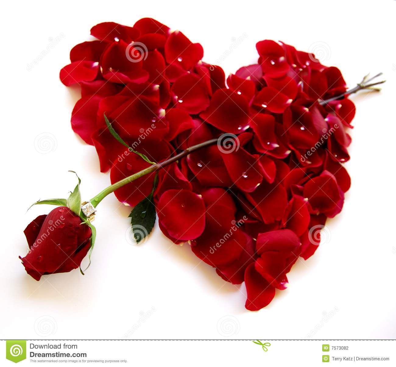 Valentines Day Cupid Stock Photos, Images, & Pictures - 1,862 Images