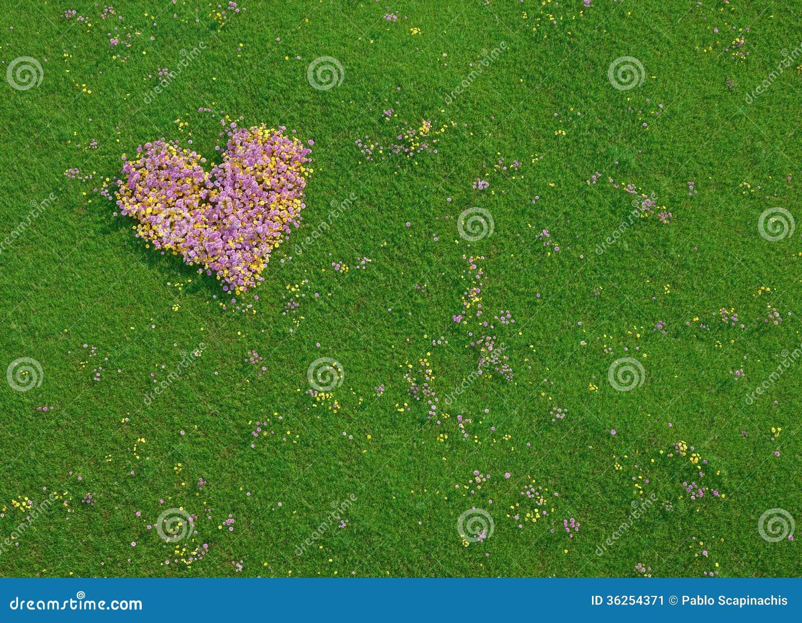 Valentinhjärta som göras av nya blommor