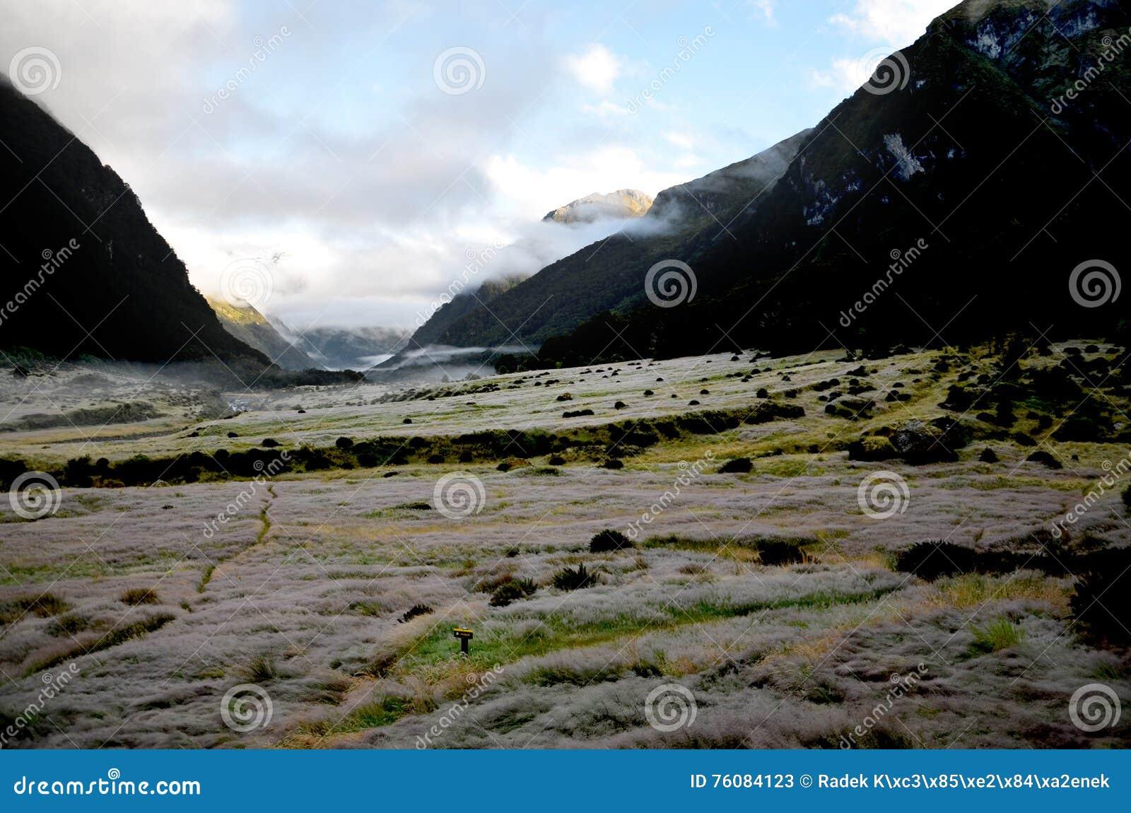 Vallée de la Sibérie ; Parc national aspirant de bâti, île du sud de Ne