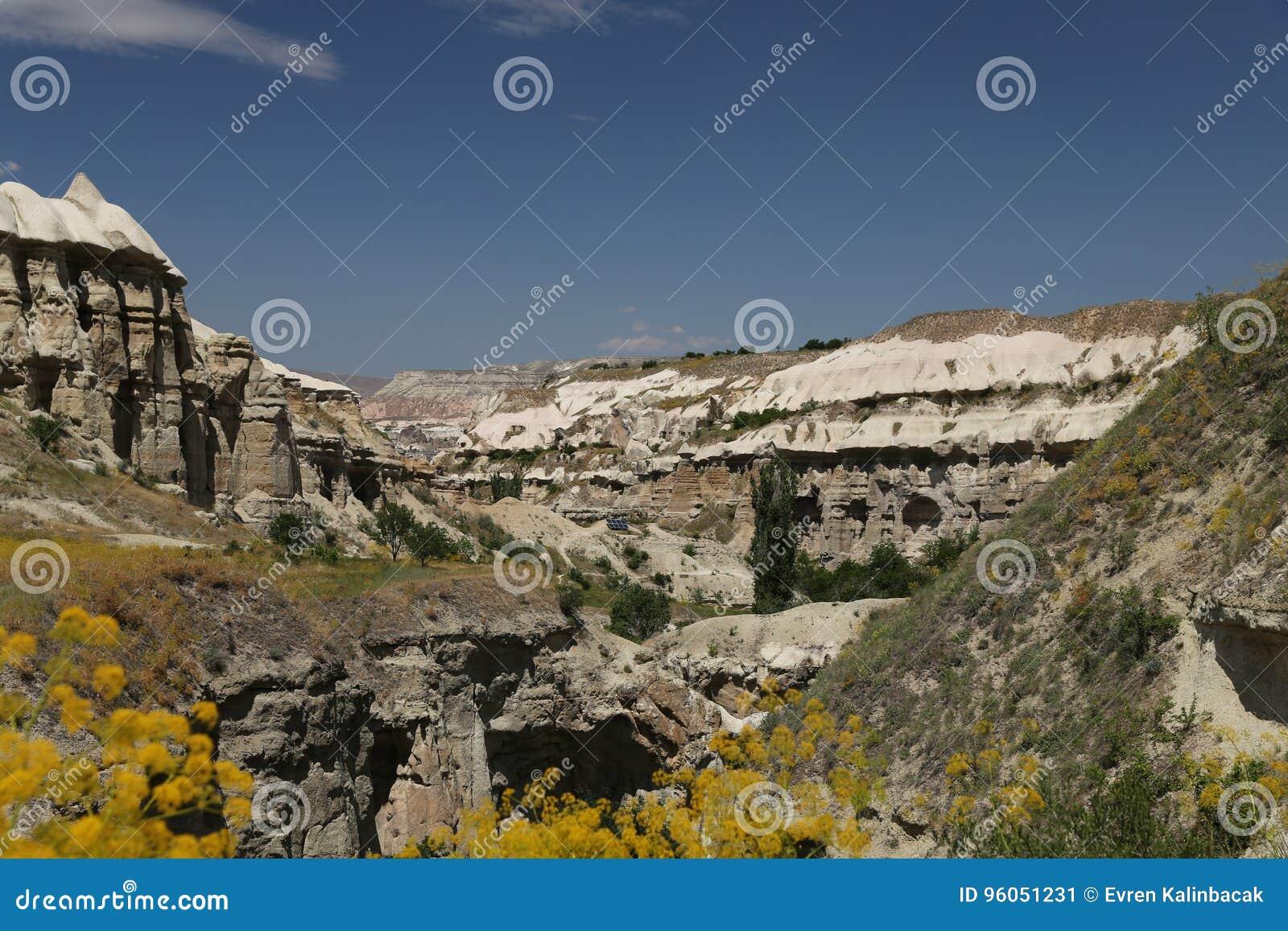 Vallée de pigeons dans Cappadocia