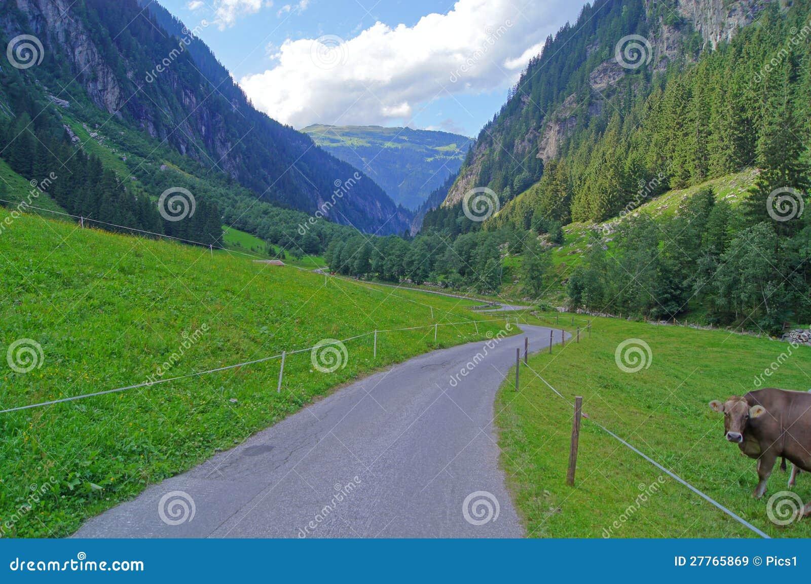 Vallée en Autriche