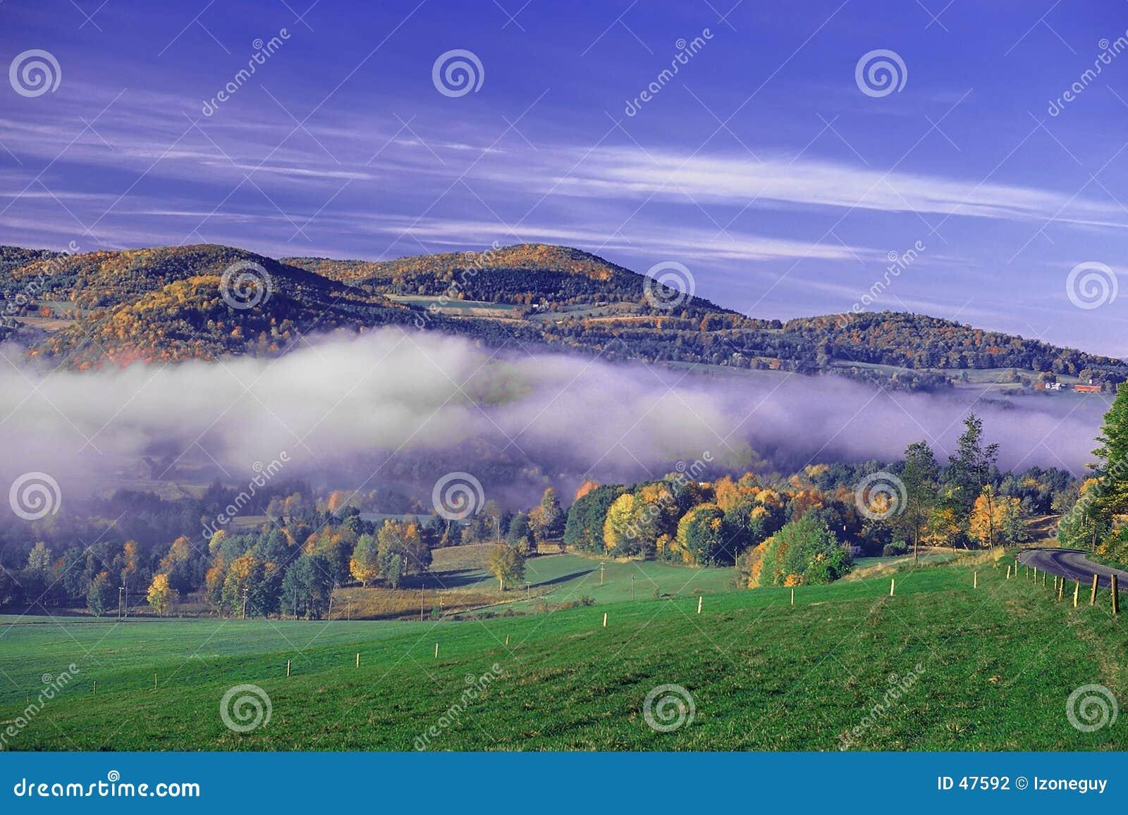 Valle brumoso