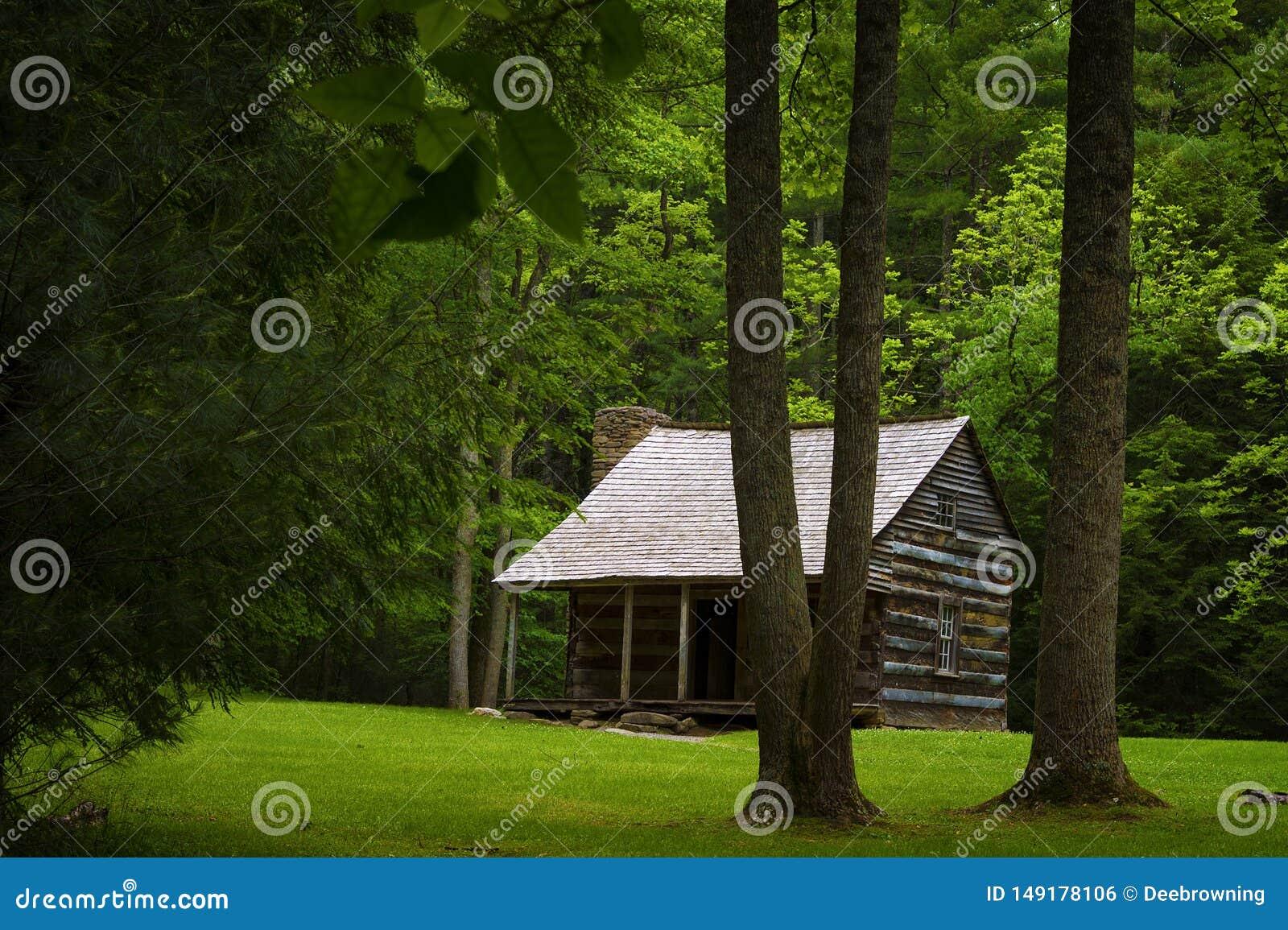 Valle de la ensenada de Cades de la cabina de los colonos en Tennessee Smoky Mountains