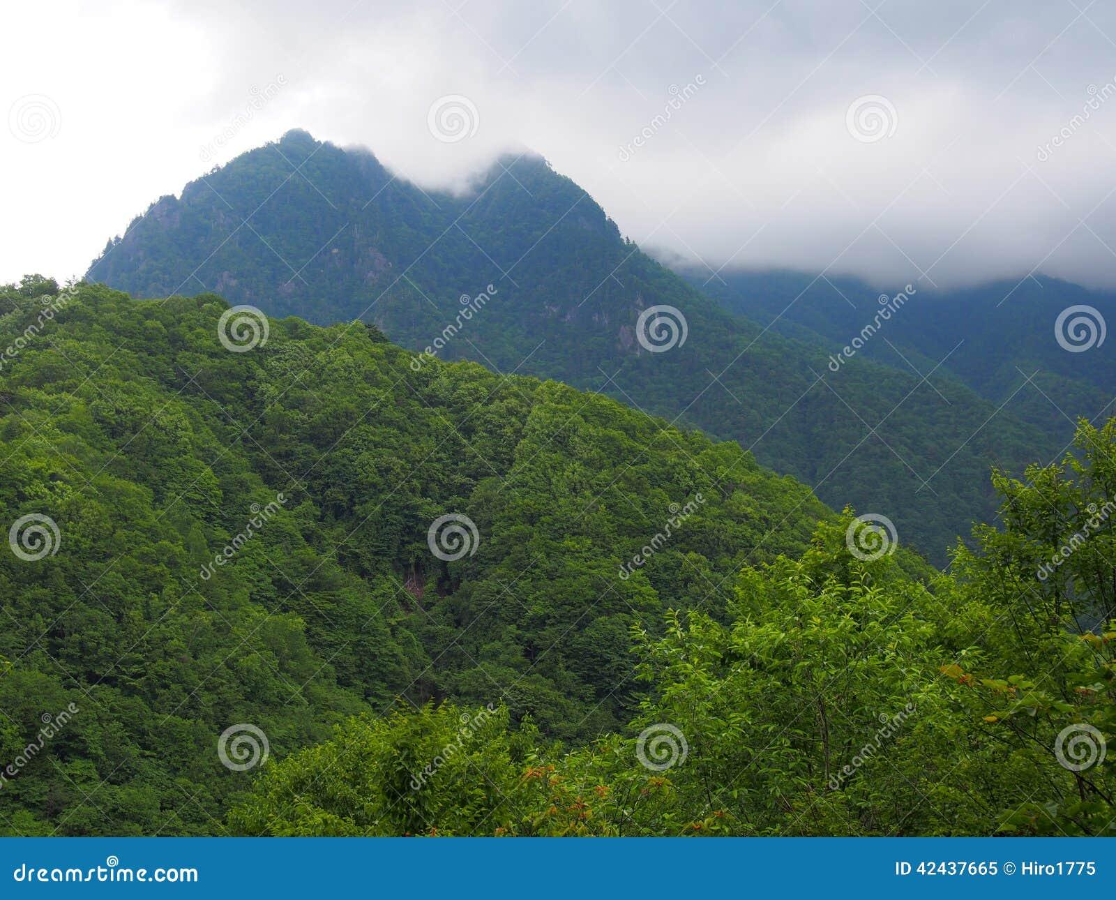 Valle de Nishizawa en Yamanashi, Japón