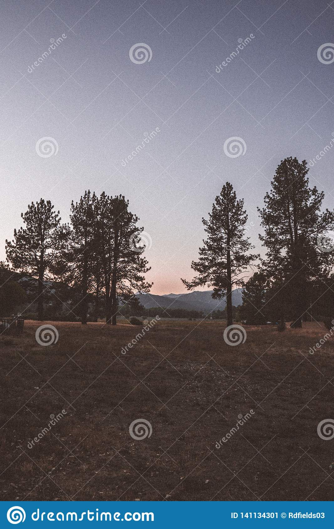 Valle de Yosemite en la opinión del túnel