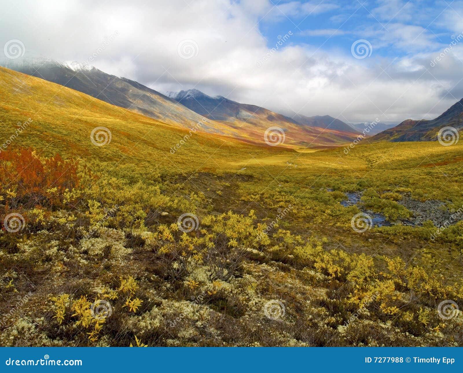 Valle del norte de Klondike