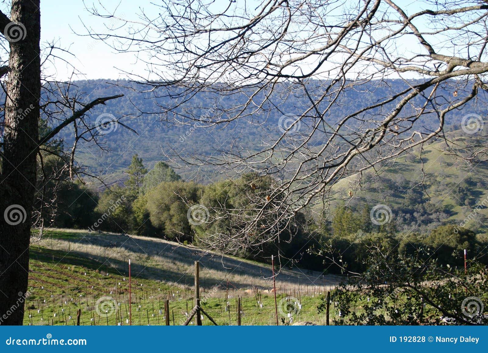 Valle di Shenandoah