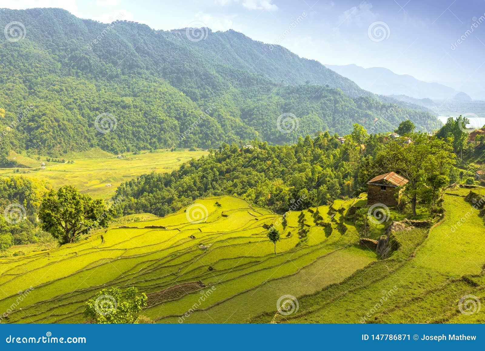Valle verde hermoso y sola casa de la roca en una colina