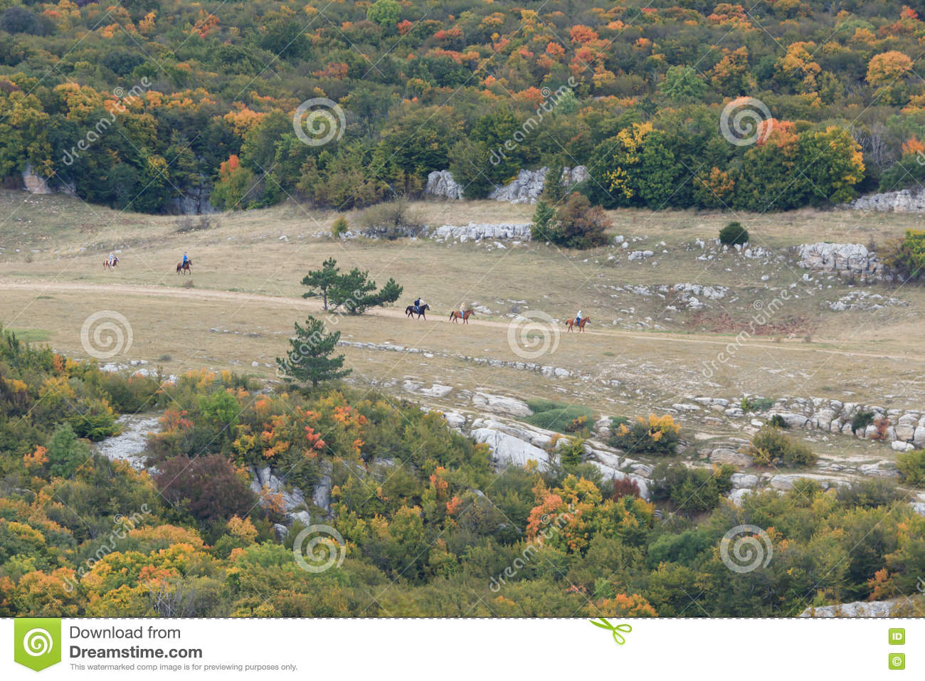 Valley in fall with horses running.