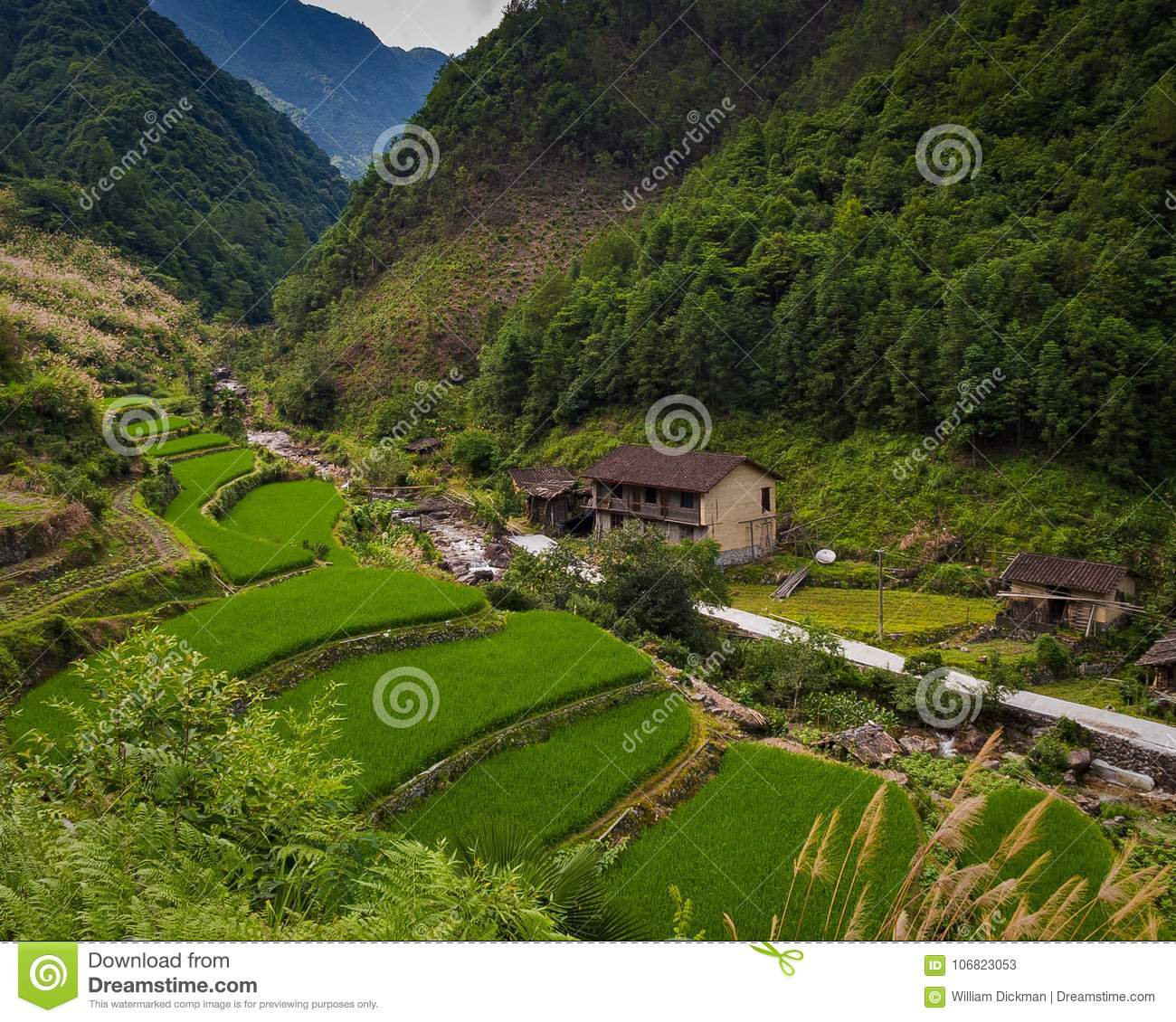 Valley Farm in China