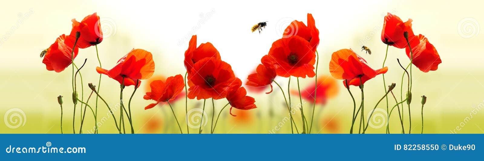 Vallmor och bin