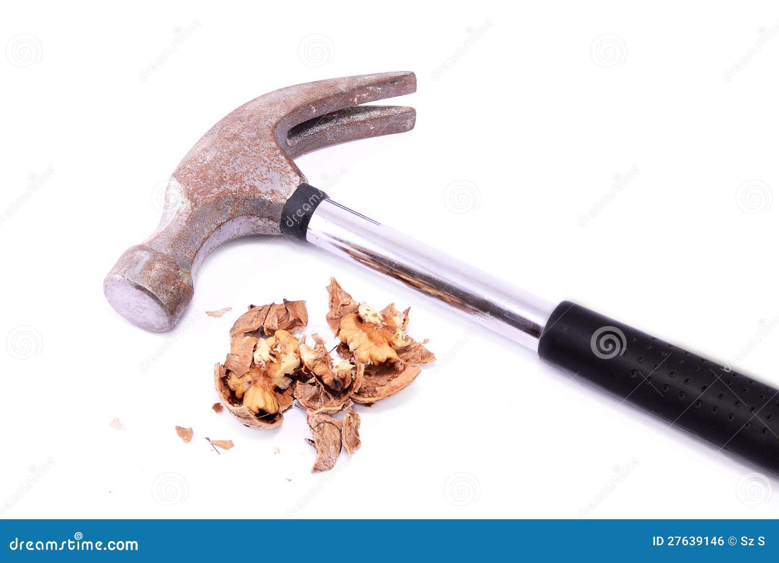 Valnöt som krossas av en hammare