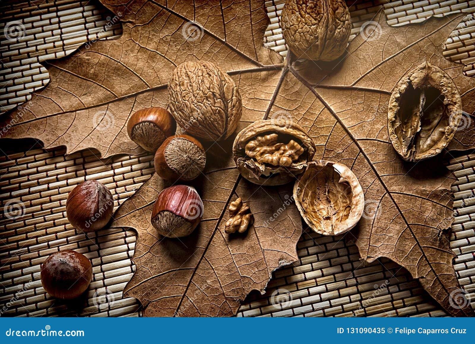 Valnötter och hasselnötter på ett torrt blad