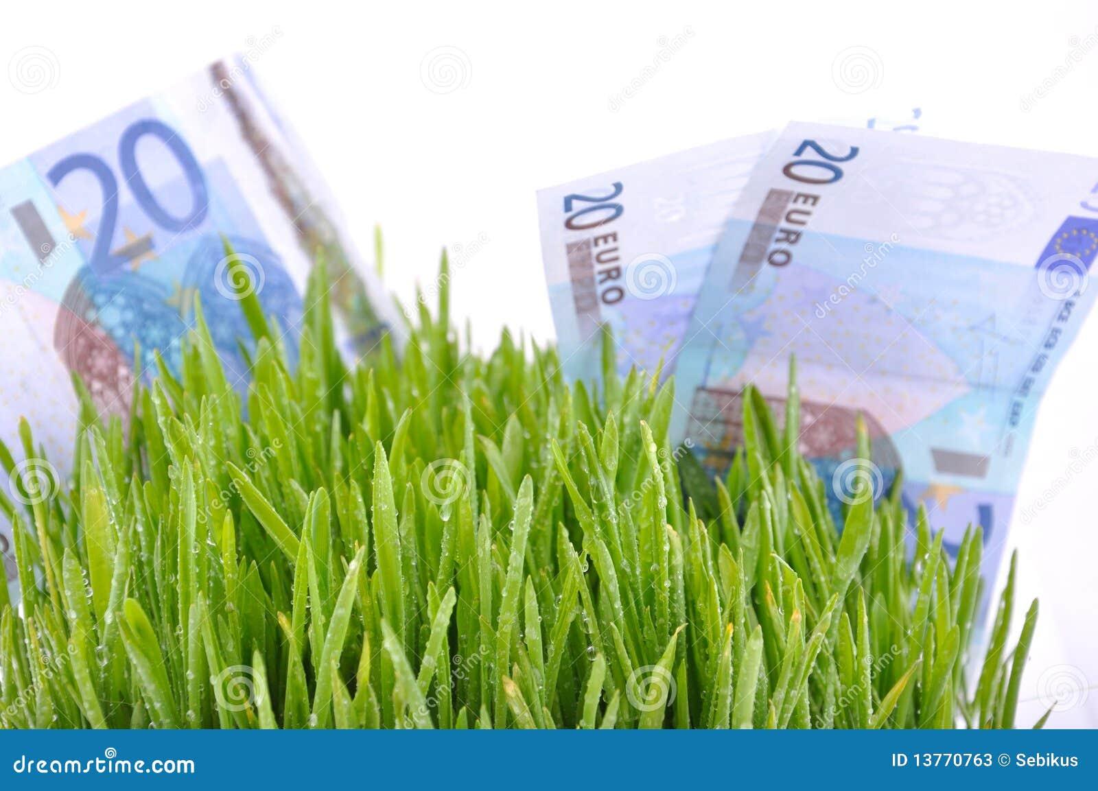 Valorizzazione di soldi
