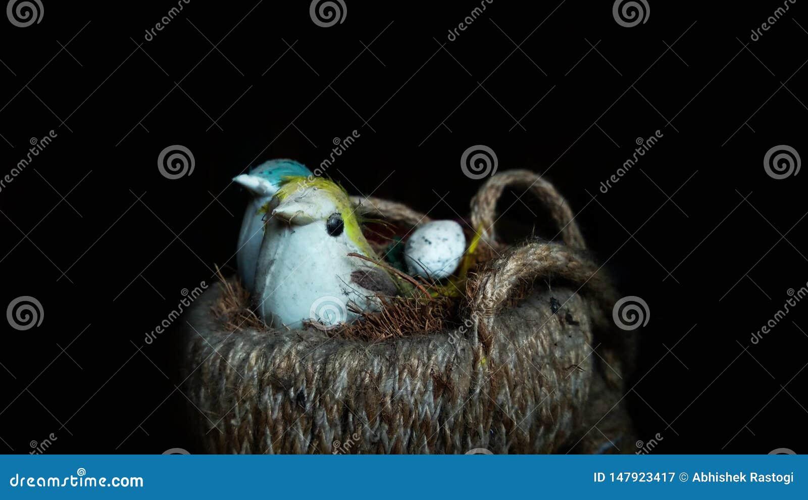 Valse vogels die met een eizitting zitten in een kunstmatig nest