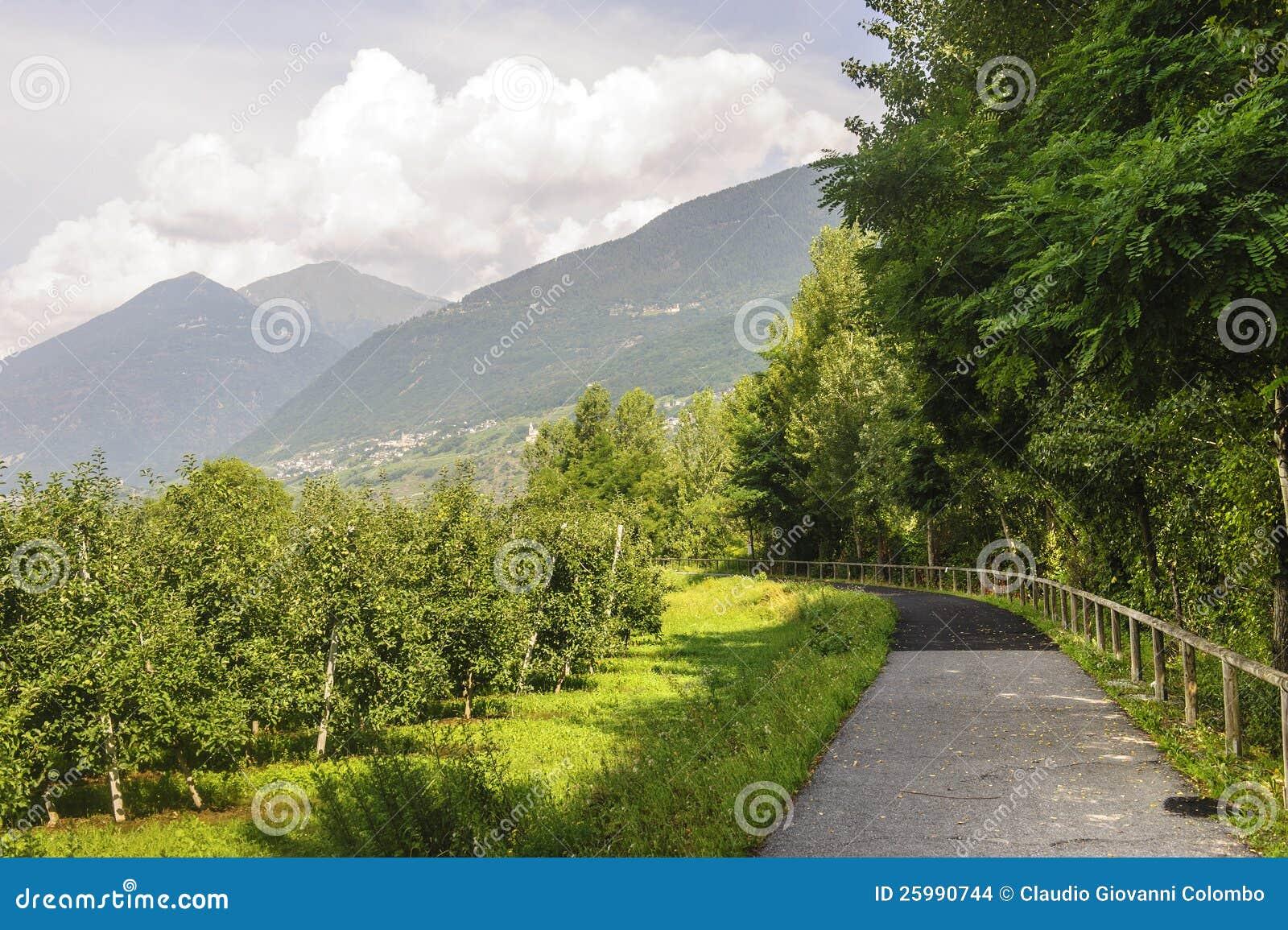 Valtellina, Schleifeweg