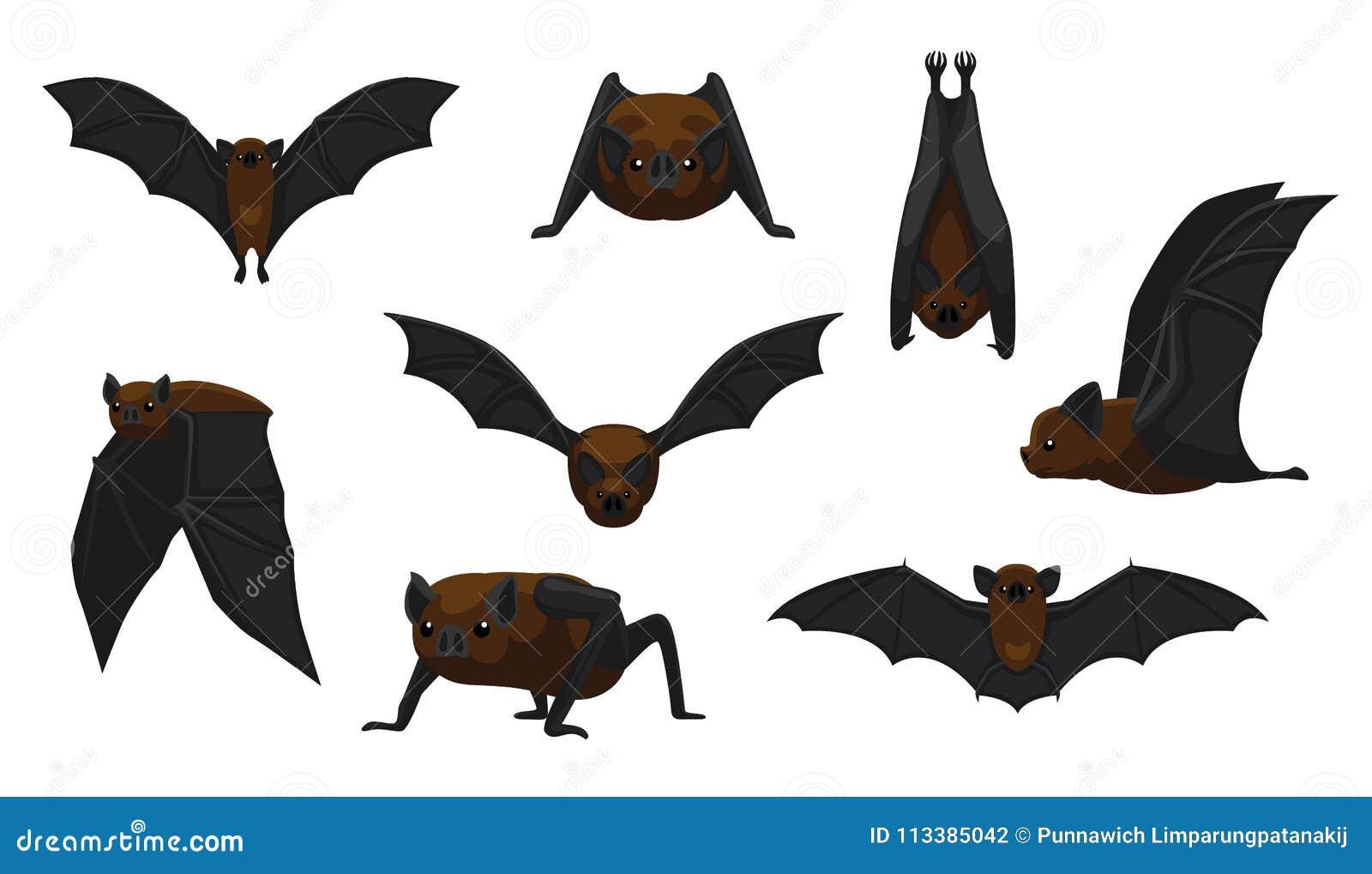 A Picture Of A Cartoon Bat vampire bat flying cartoon vector illustration stock vector