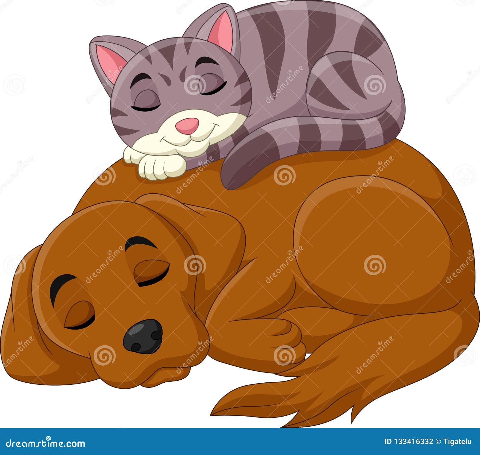 Van de beeldverhaalkat en hond slaap