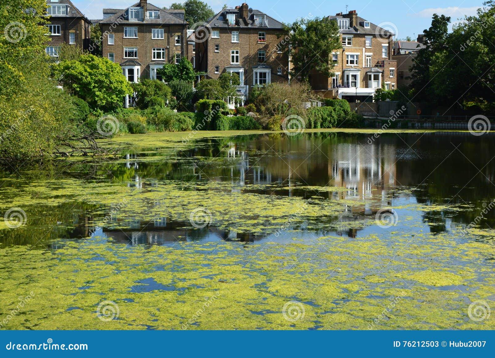 Van de de dopheidetuin van meerlonden Hampstead rust de levende mening van meren die huis levende lunchen bouwen meer