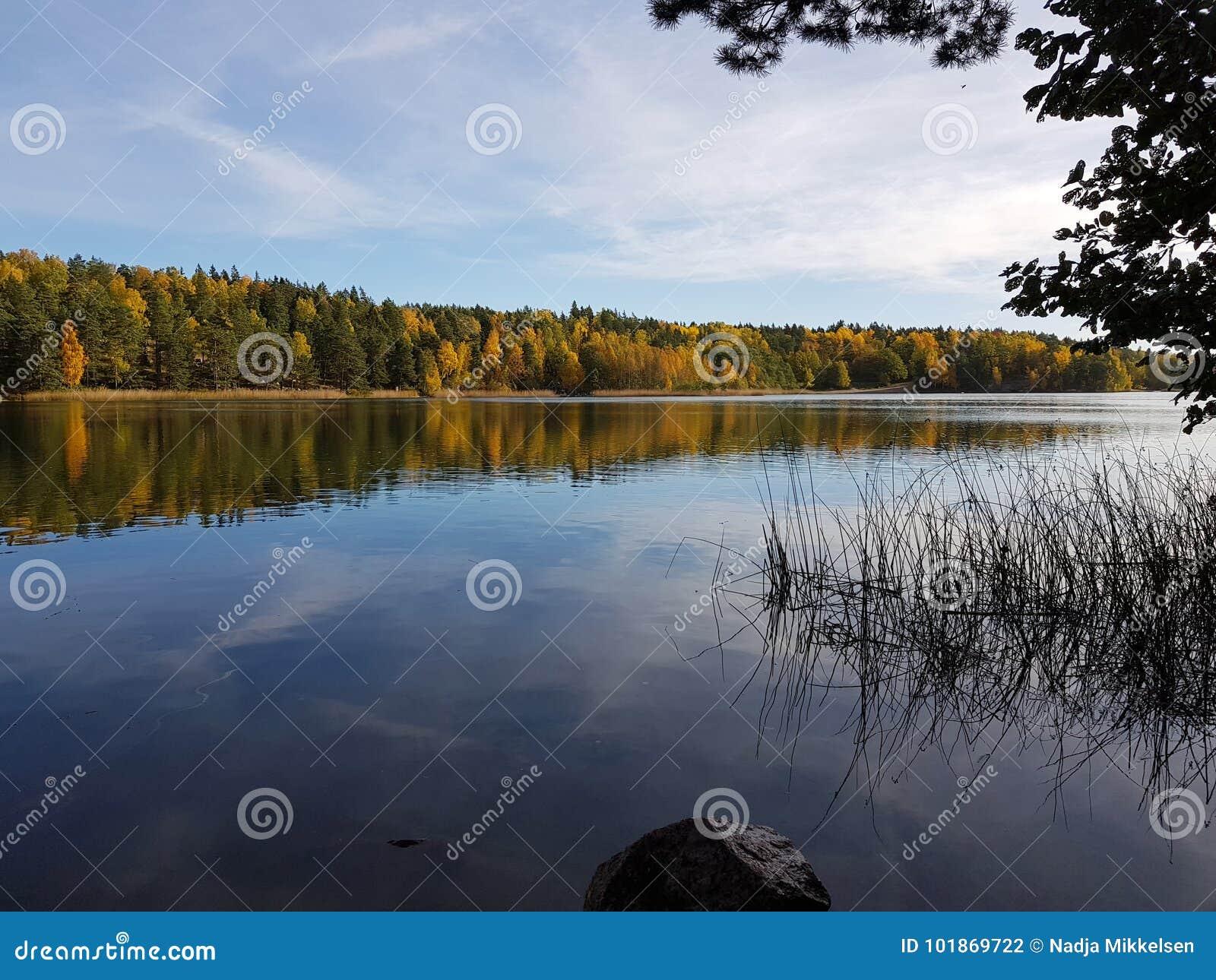 Van de het meerherfst van Rösjönzweden de bezinningsbladeren