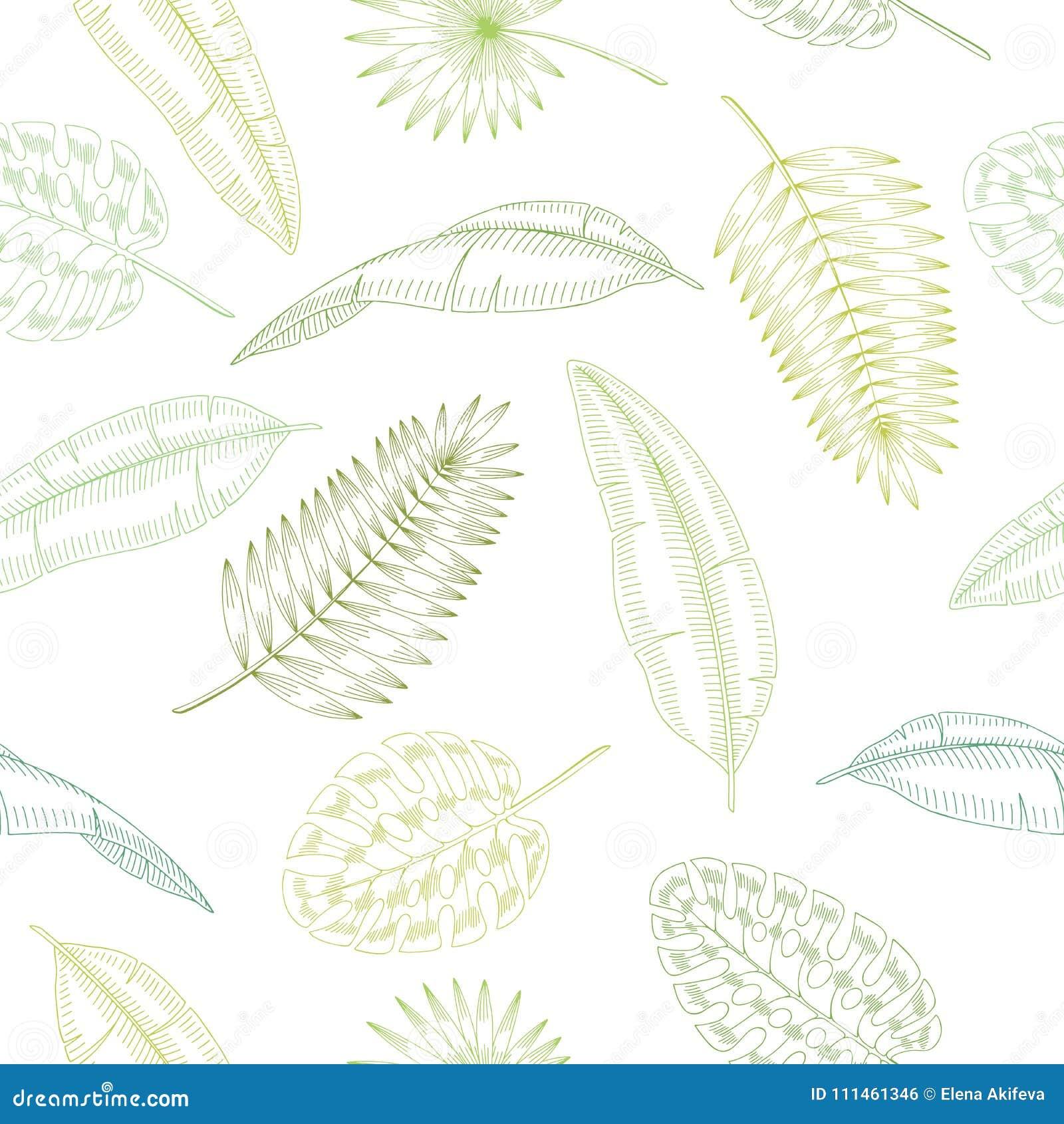 Van de het patroonschets van de palmblad grafische groene kleur naadloze de illustratievector