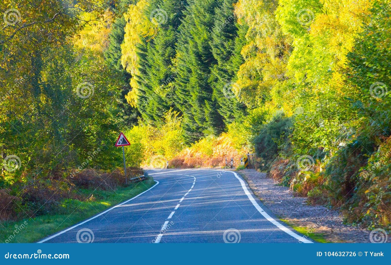 Download Van De De Hooglandenweg Van Schotland De De Reisherfst Verlaat Geelgroene Kleuren Ecosse Du Nord Stock Foto - Afbeelding bestaande uit groen, autumn: 104632726