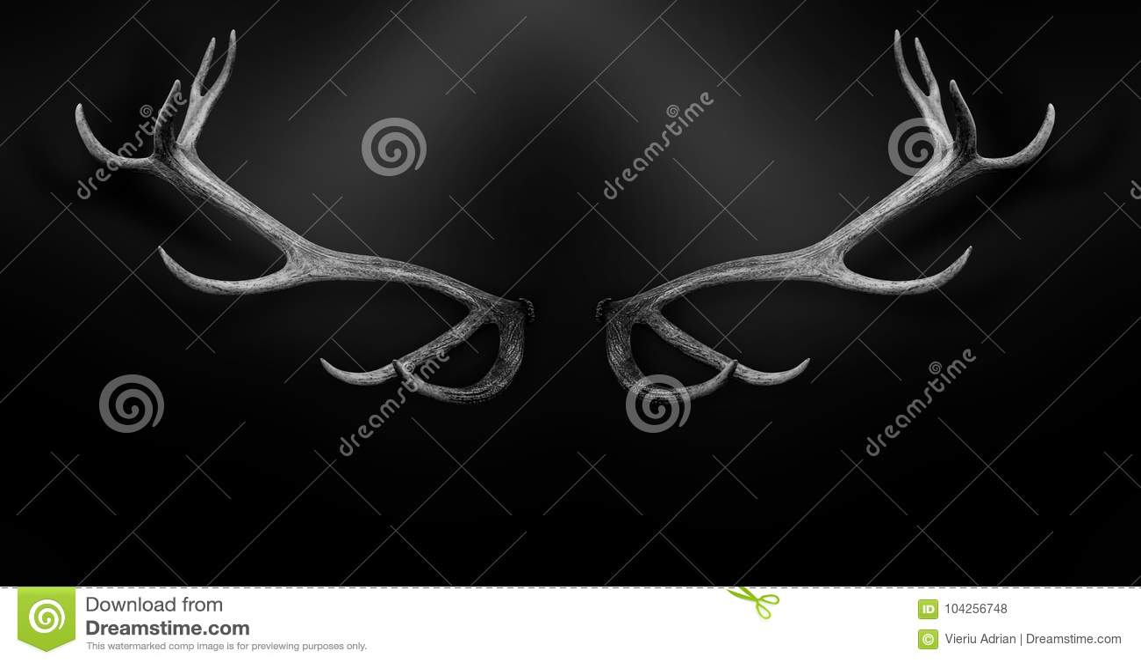 Van hertengeweitakken 3d geïsoleerd zwart wit dier als achtergrond