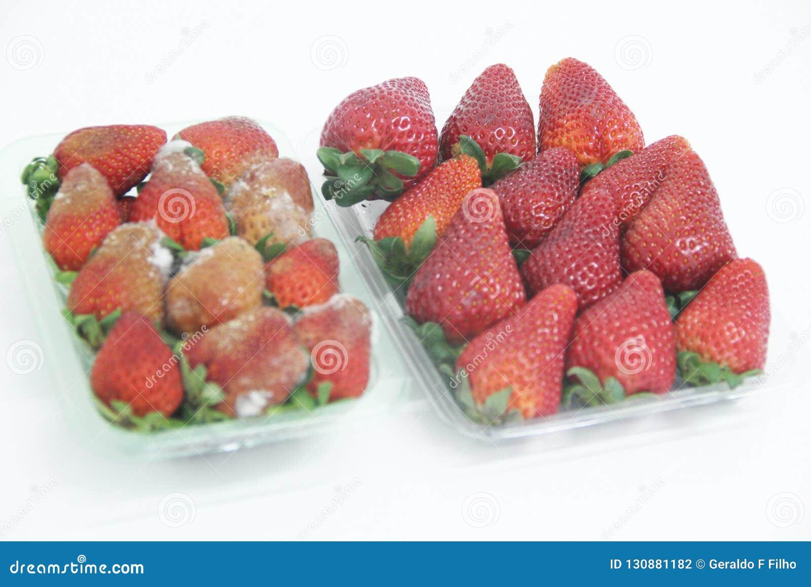 Van het de vorm heerlijk gezond fruit van het aardbeivoedsel landbouw geïsoleerd Sao Paulo Brazil