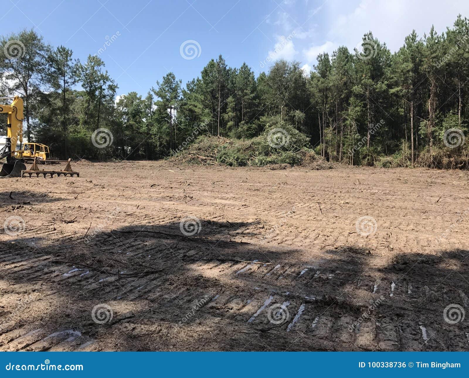 Van het landopheldering en registreren hout