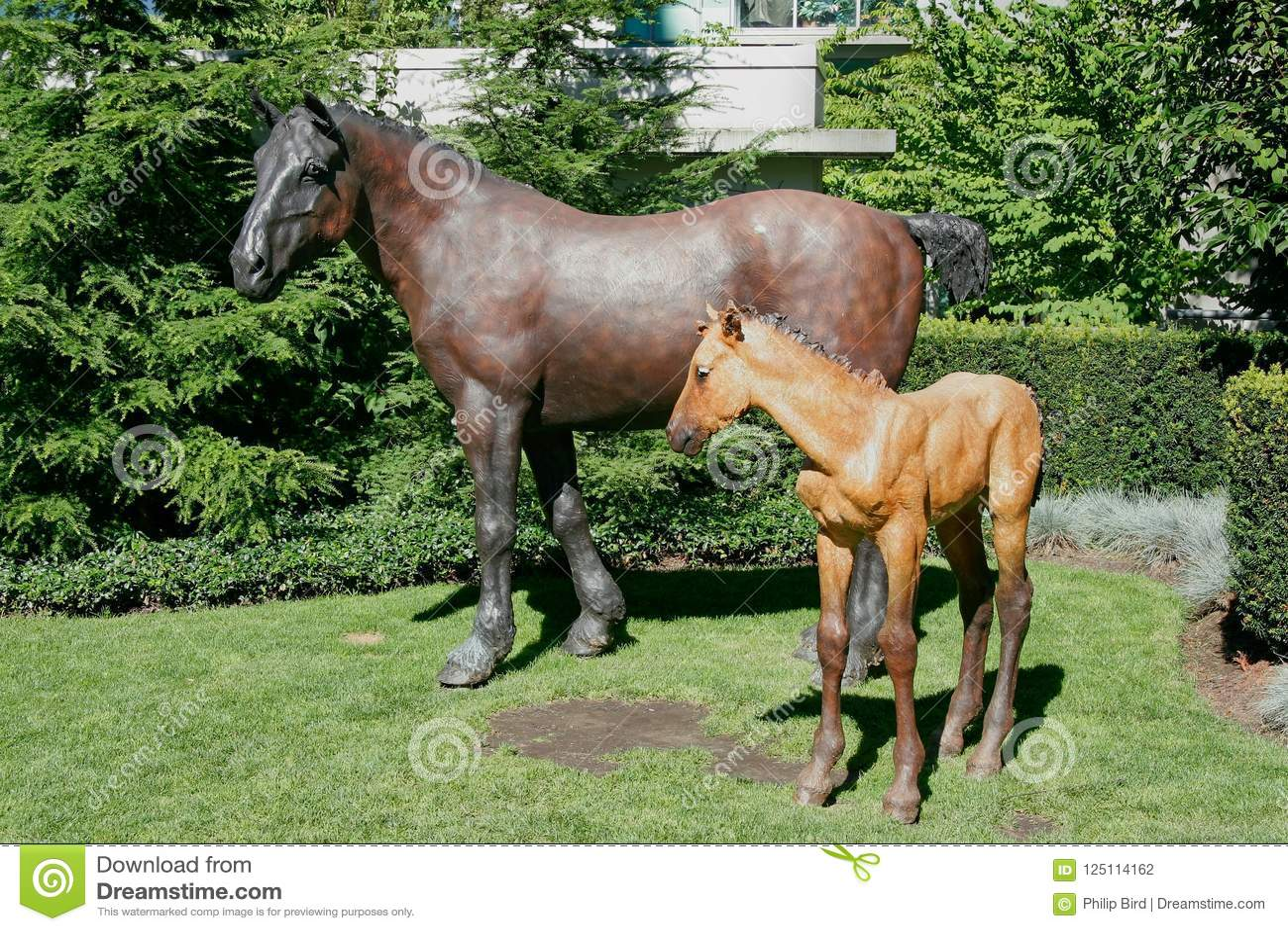 VANCOUVER, COLUMBIA/CANADA BRITÁNICO - 14 DE AGOSTO: Estatuas h del caballo