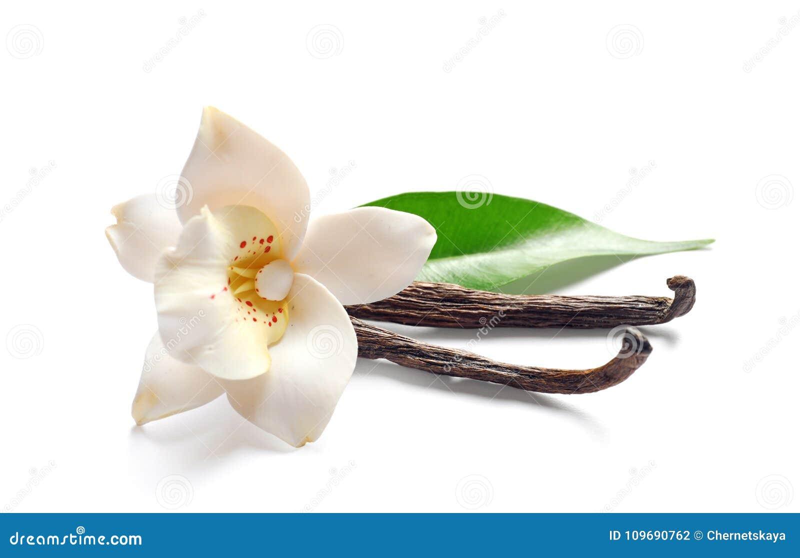Vaniljpinnar och blomma