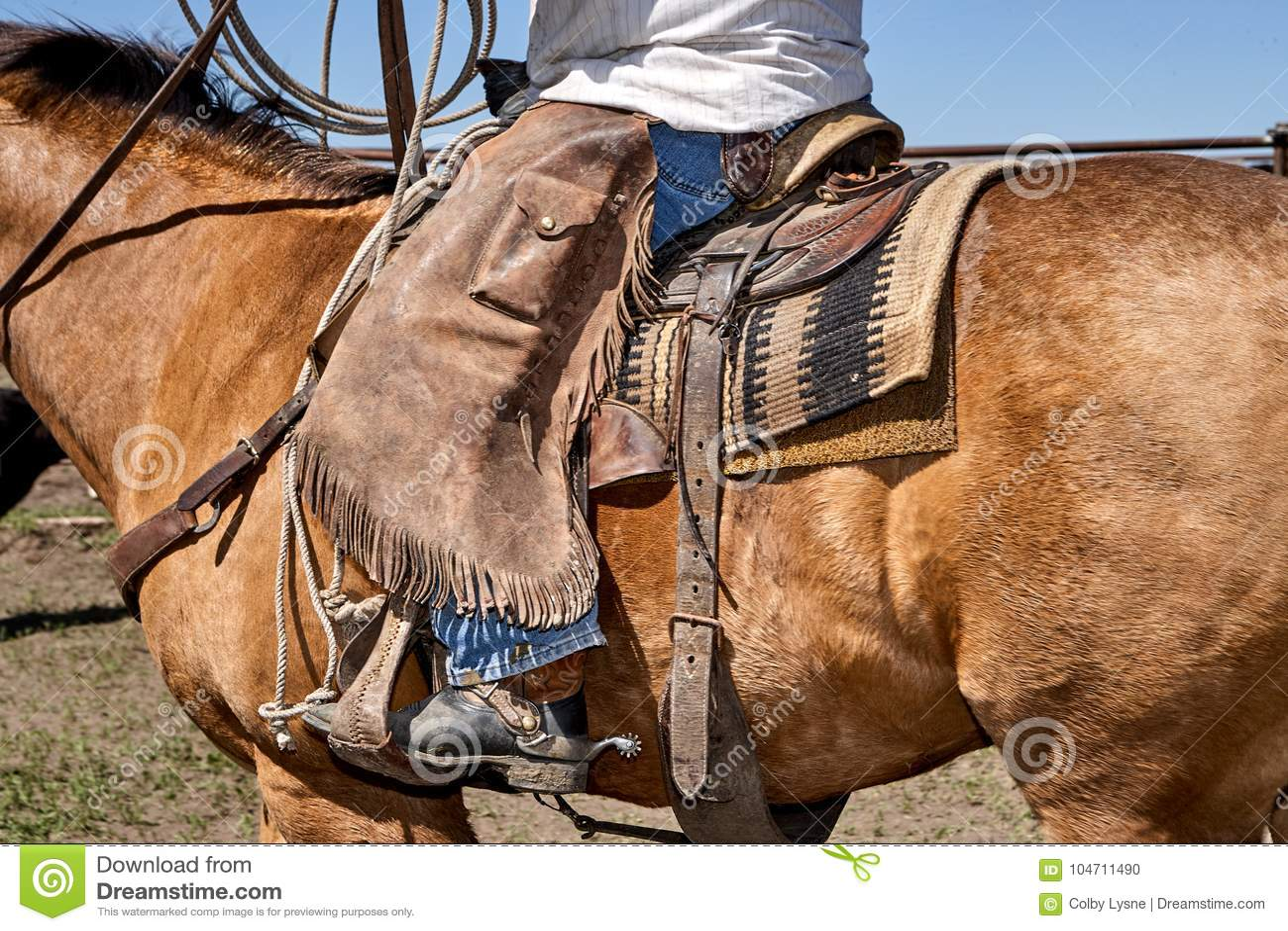 Vaqueiro ocidental tradicional nas caneleiras de couro
