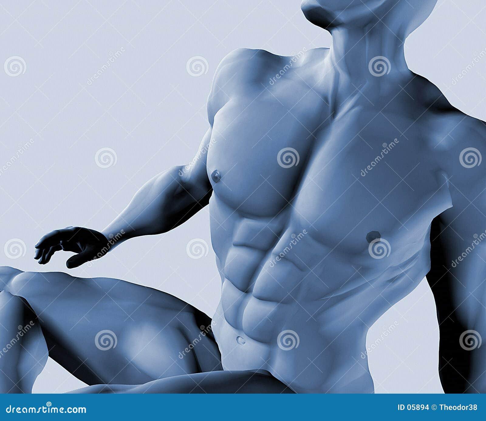 Varón desnudo