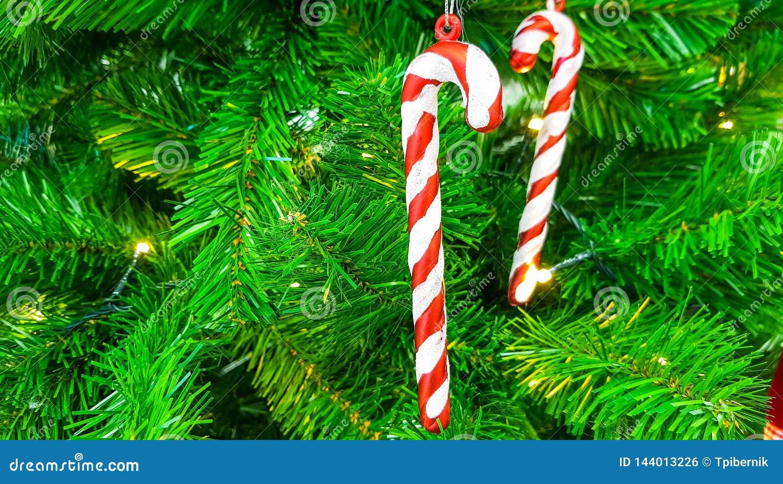 Varas vermelhas e brancas doces dos doces que penduram em uma refeição matinal da árvore de Natal artificial plástica verde