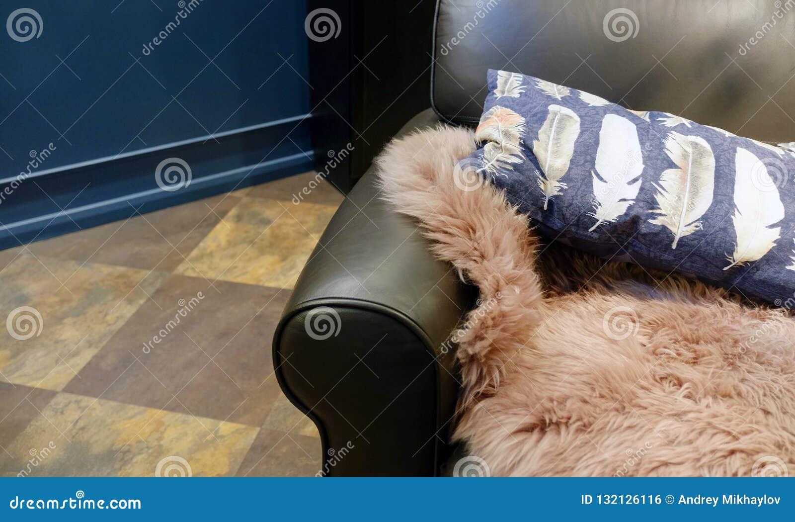 Vardagsruminre piskar soffan med kuddar och pälsplädet