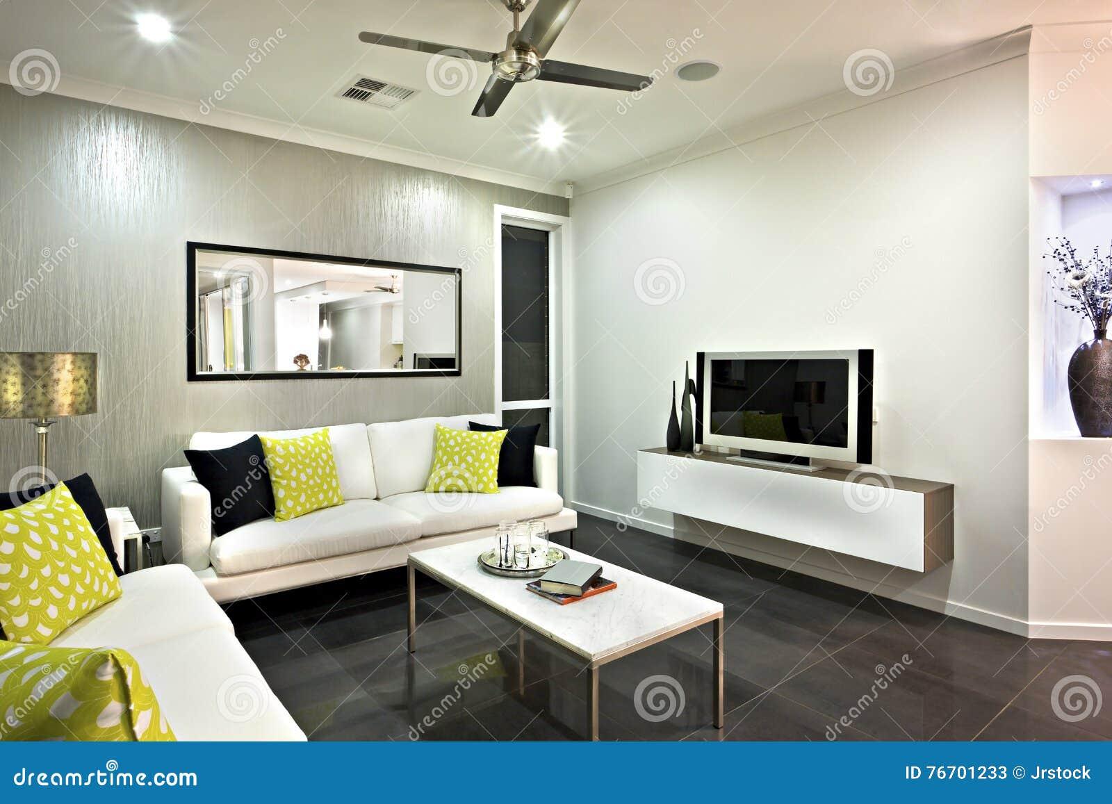 Vardagsrumområdesslut upp med en spegel och en television