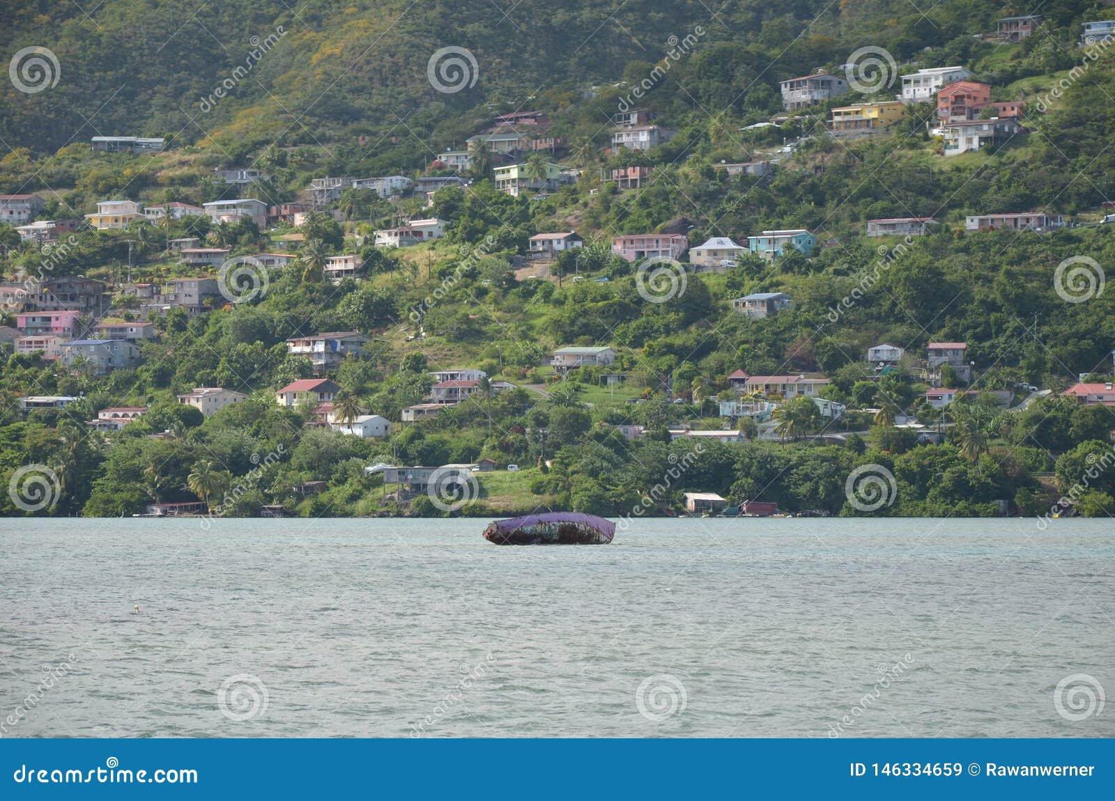 Varech et villas de bateau de la Martinique