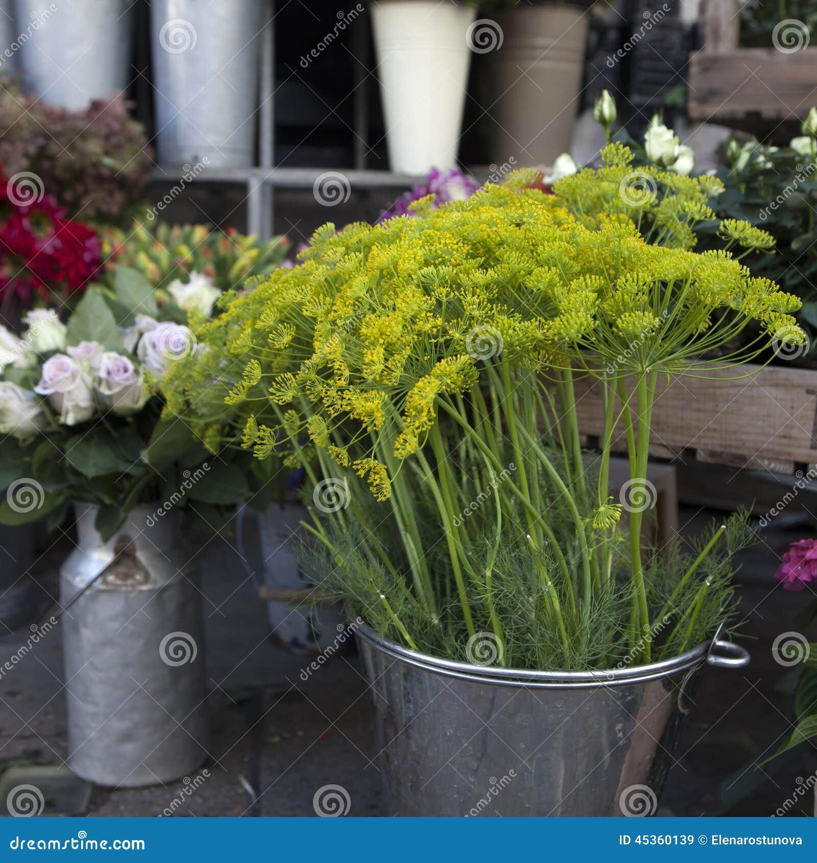 Variété colorée de fleurs