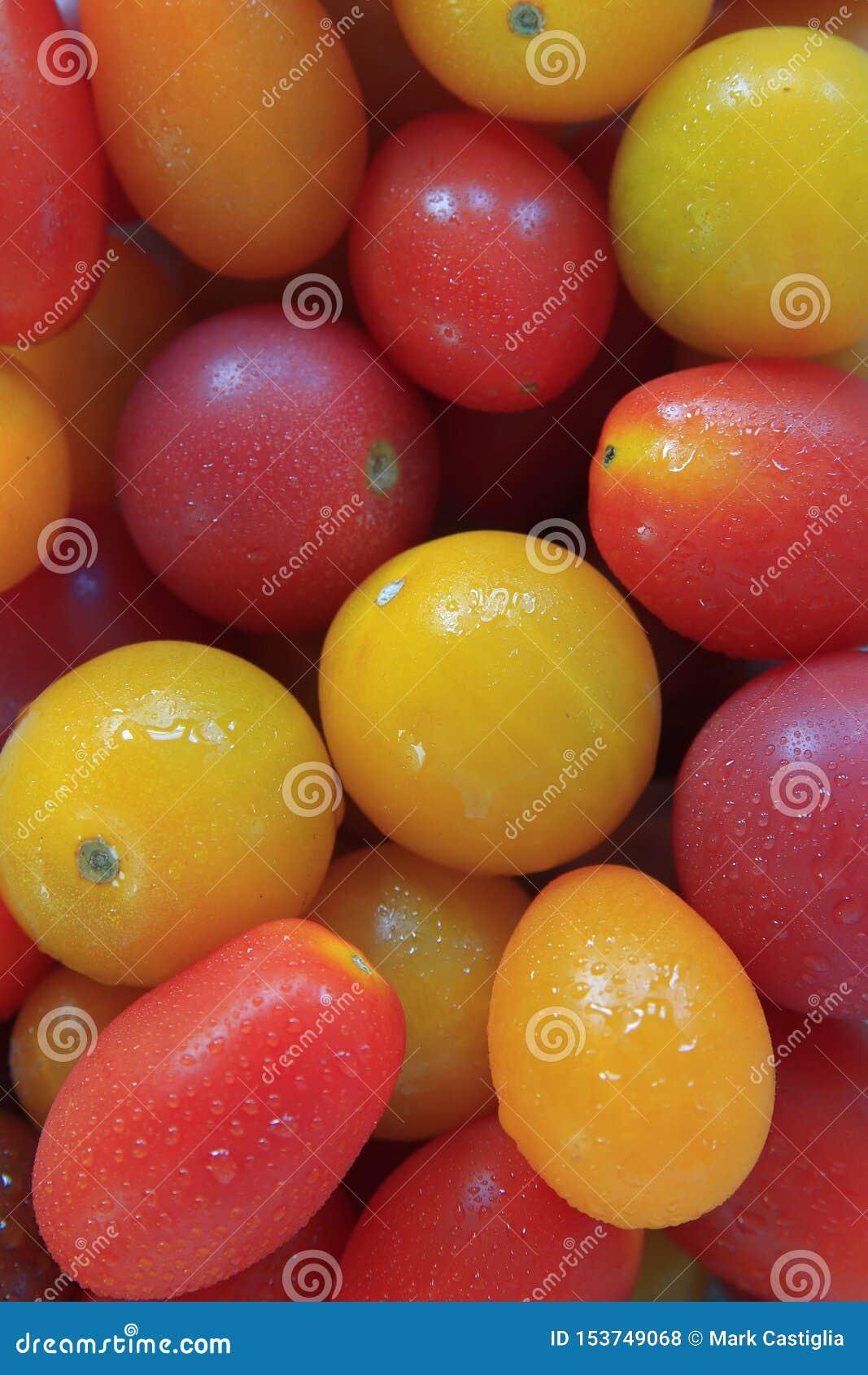 Variété de tomates-cerises d héritage groupées ensemble