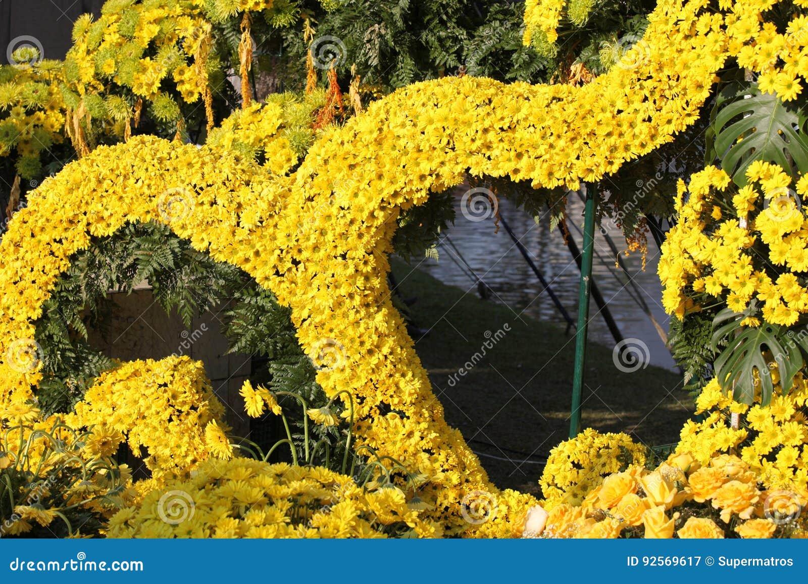 Vari fiori gialli luminosi in composizione, Tailandia