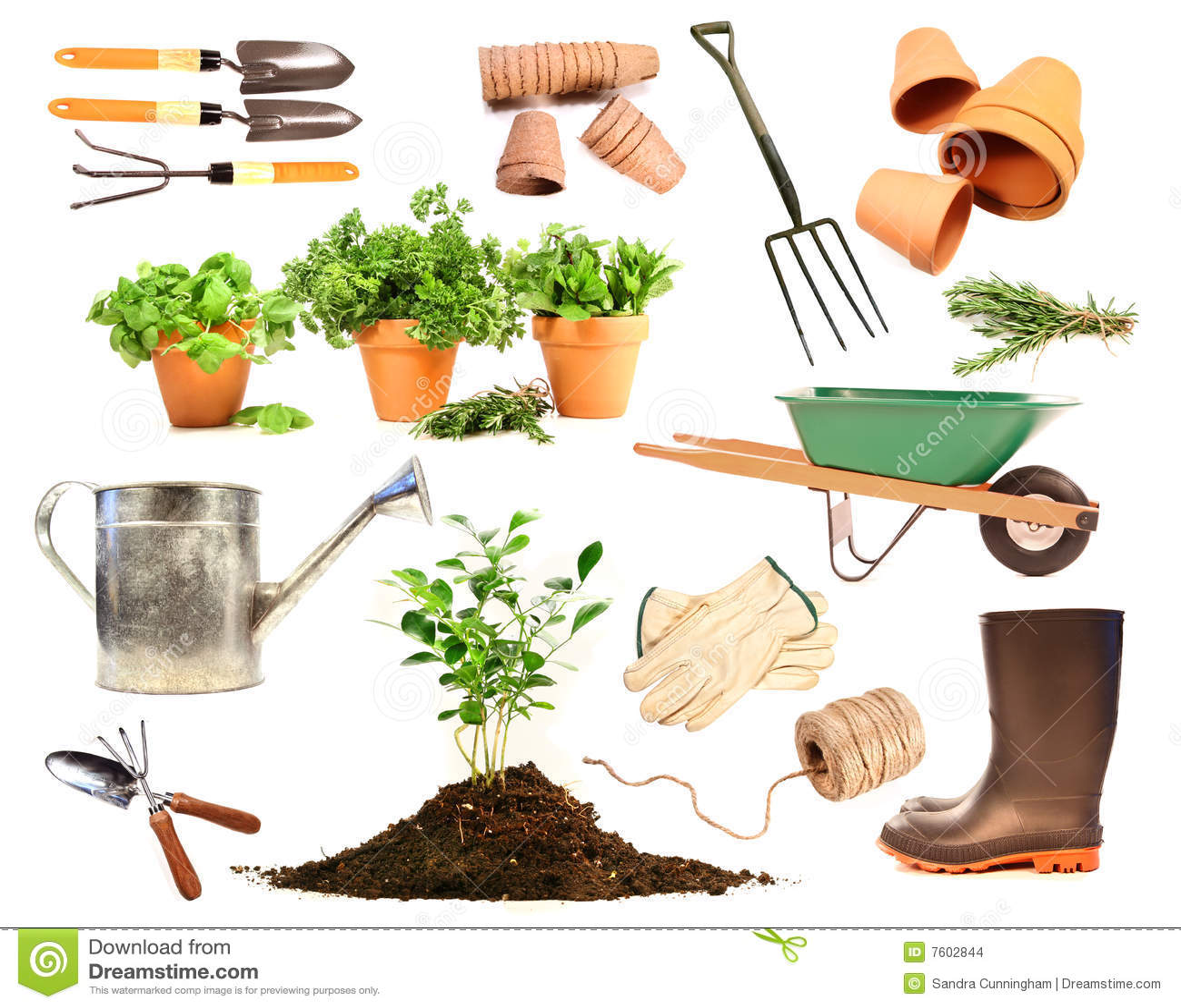 Variedad de objetos para el resorte que planta en blanco