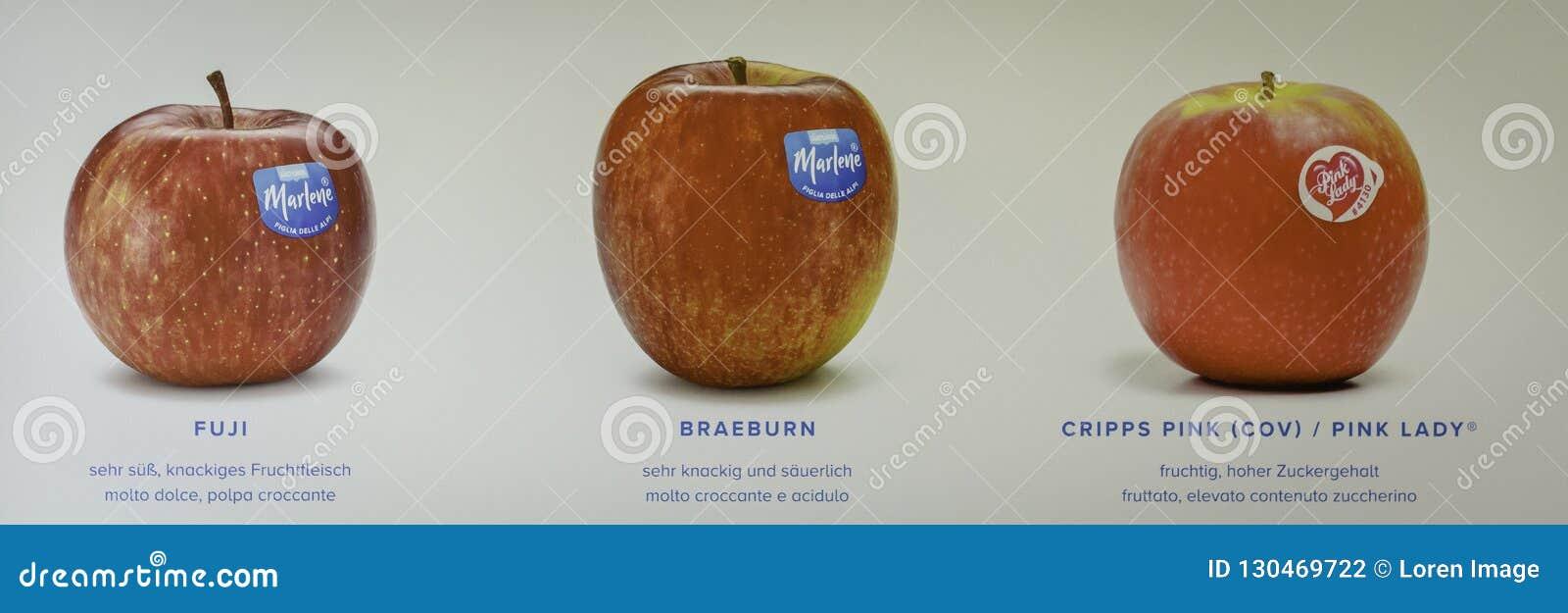 Varietà delle mele