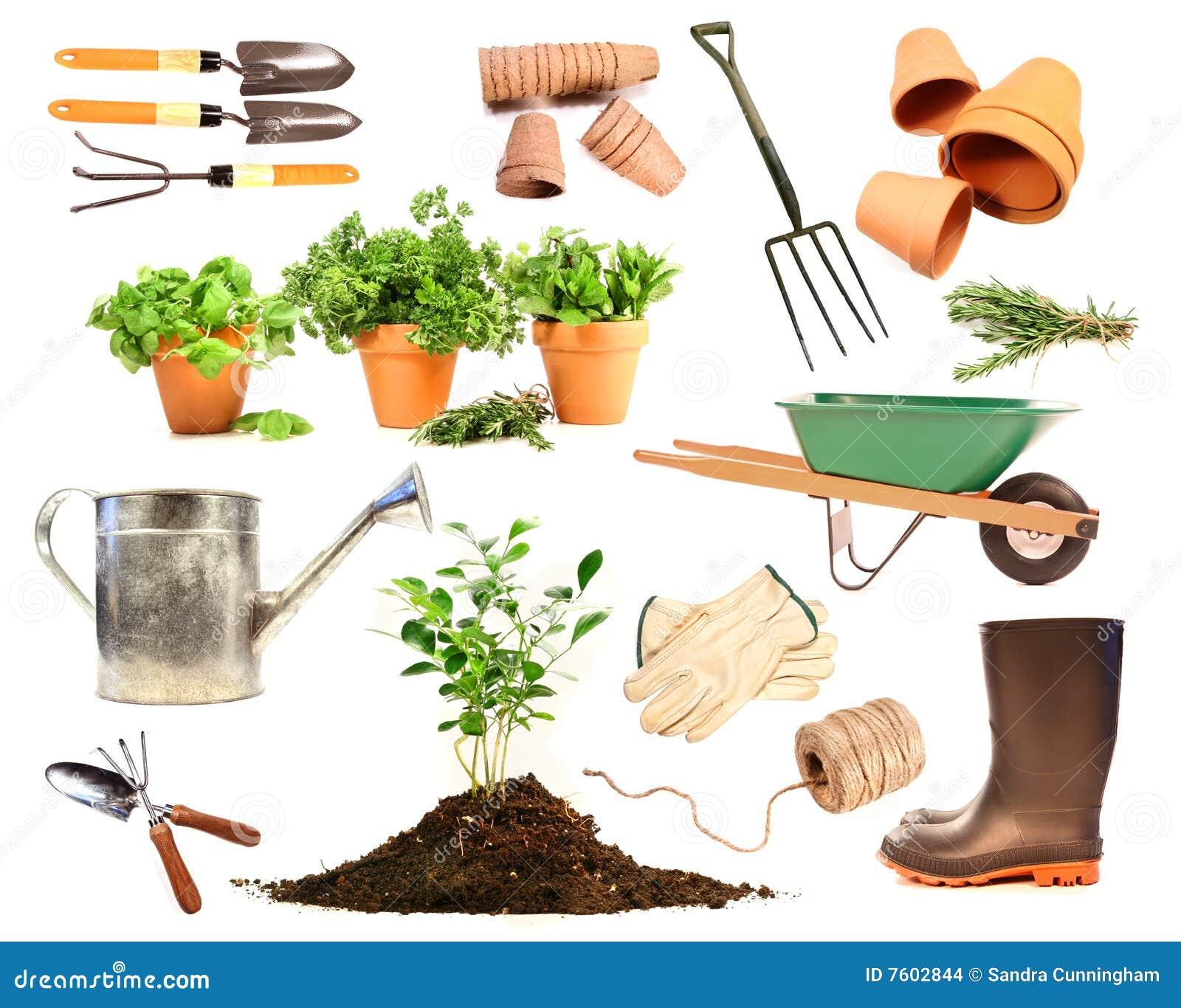 Varietà di oggetti per la sorgente che pianta sul bianco