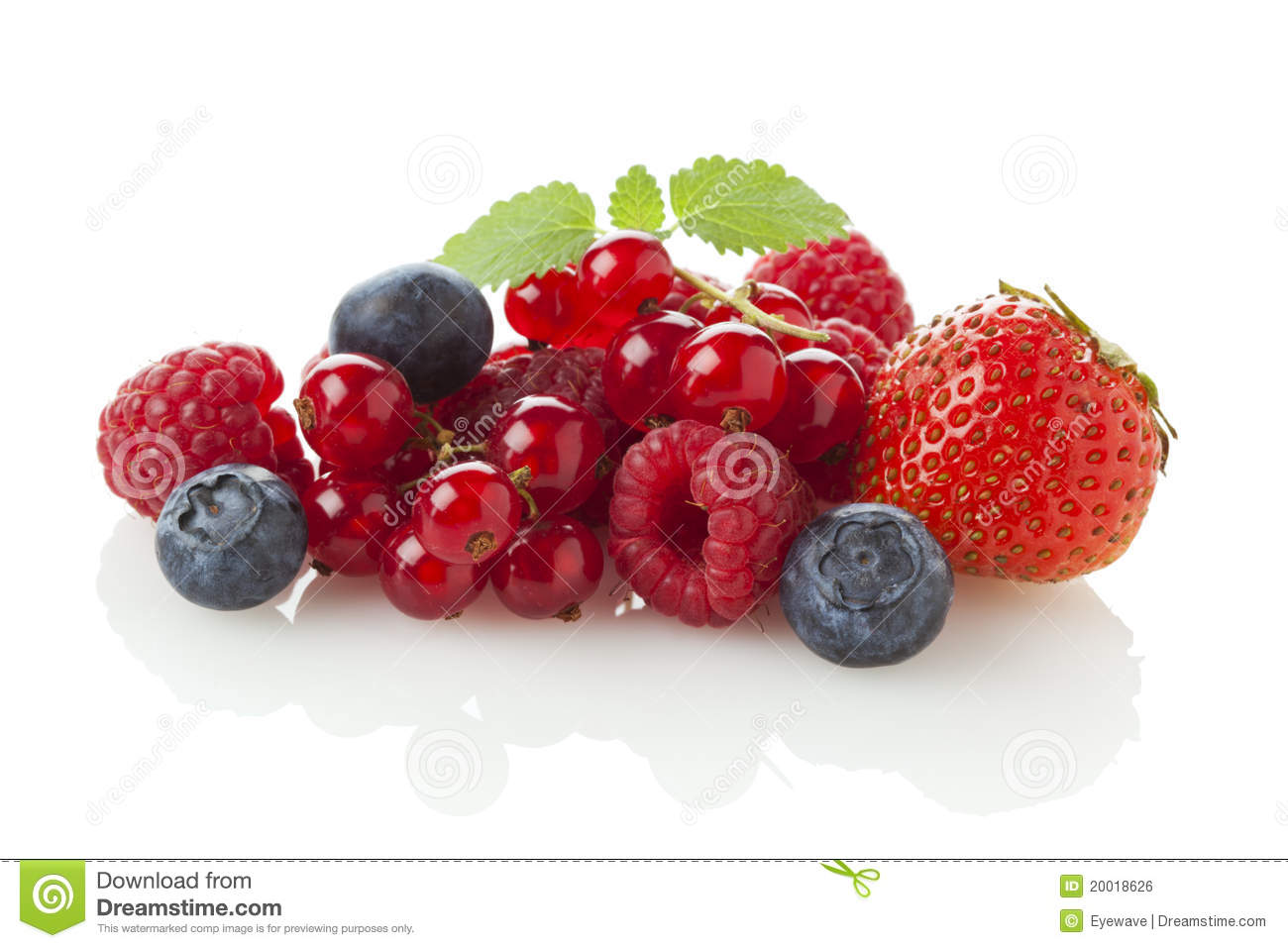Variety of berry fruit