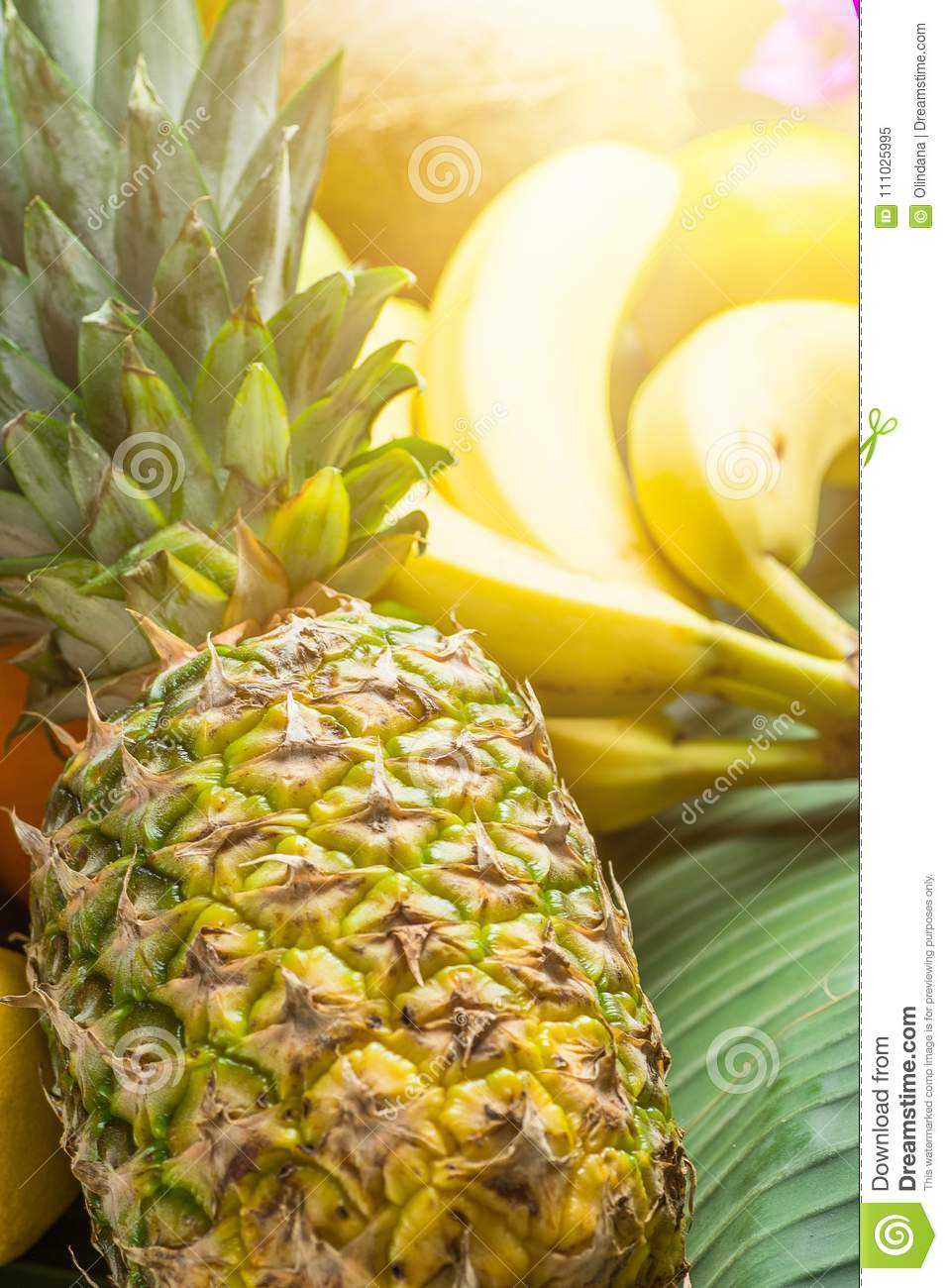 Variety of Different Tropical and Summer Fruits. Pineapple Mango Coconut Citrus Oranges Lemons Apples Kiwi Bananas on Palm Leaf