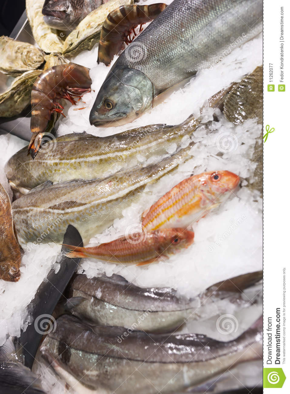 Variety of fish and seafood on market ice display royalty for Is fish seafood