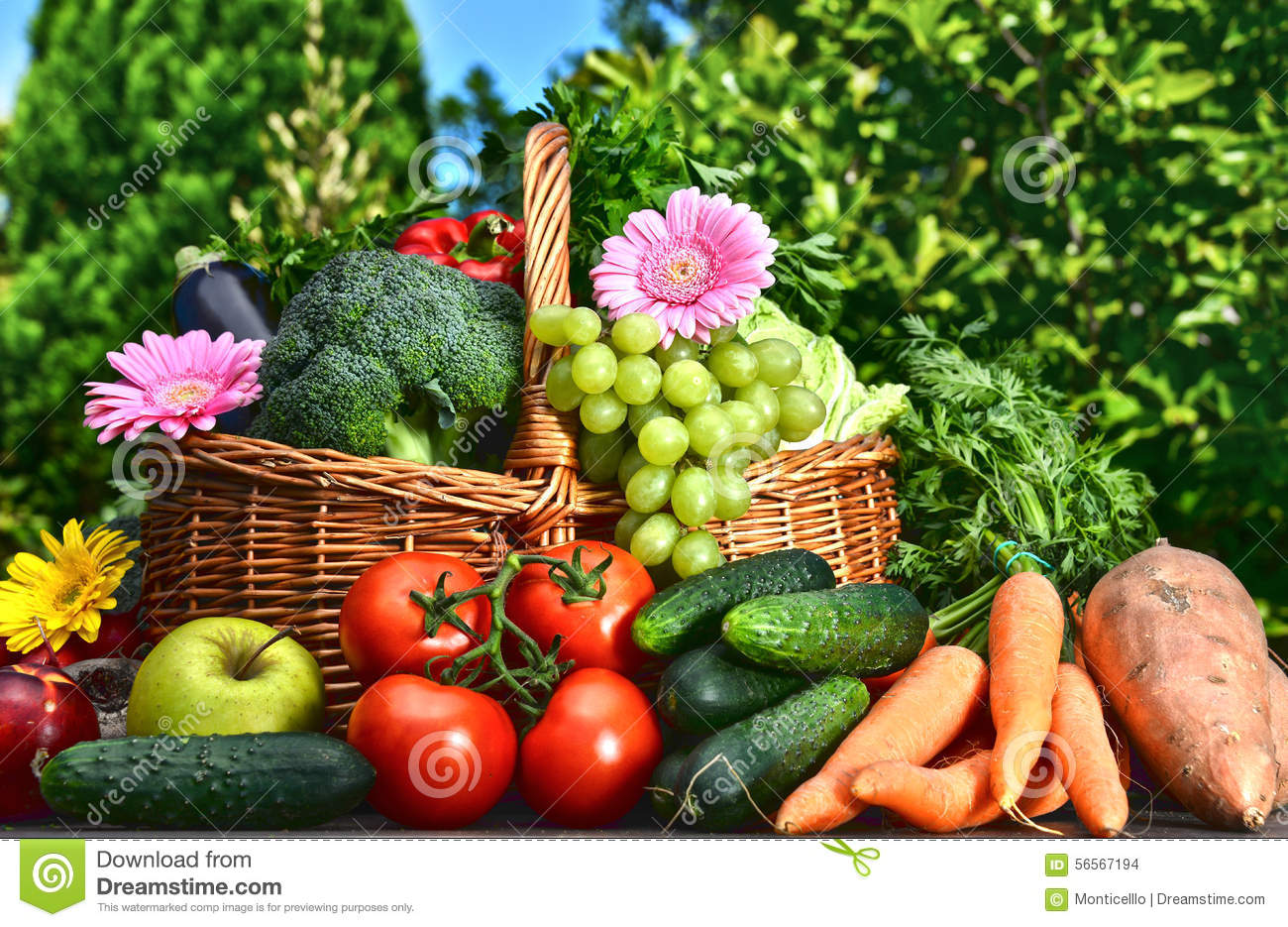 Variety of fresh organic vegetables and fruits in the for Fruit and vegetable garden