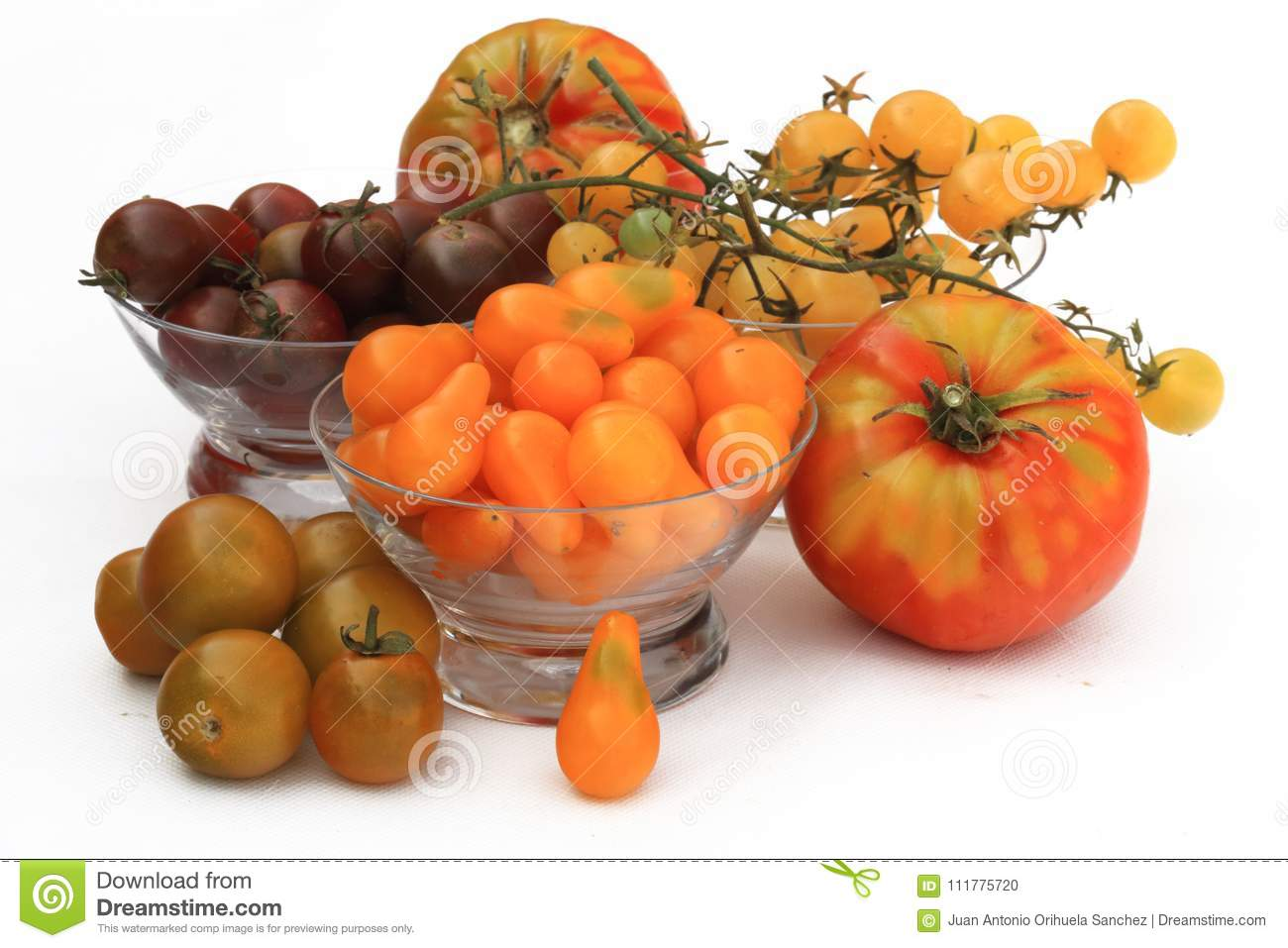 Variety of fresh tomatoes grown in organic orchards